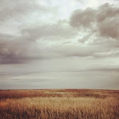 Prairie as far as the eye can see at Touch the Sky Prairie