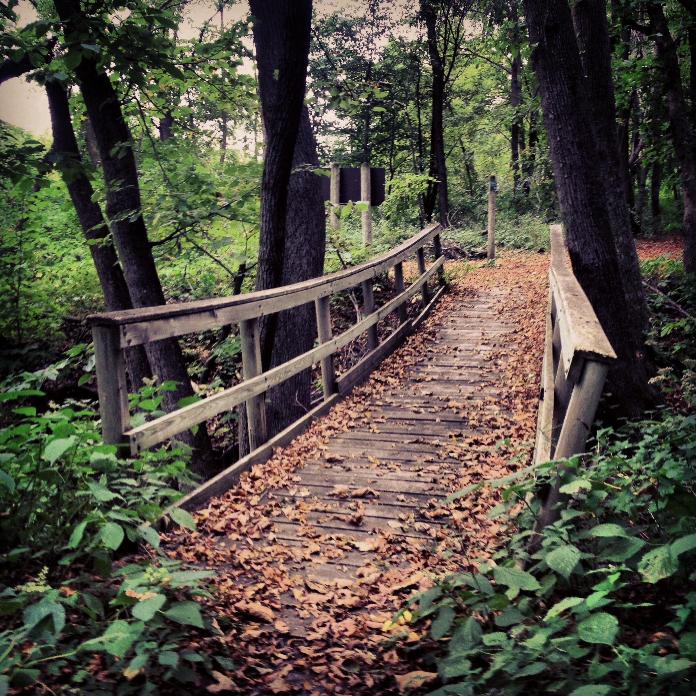 Bridge at Kilen Woods State Park