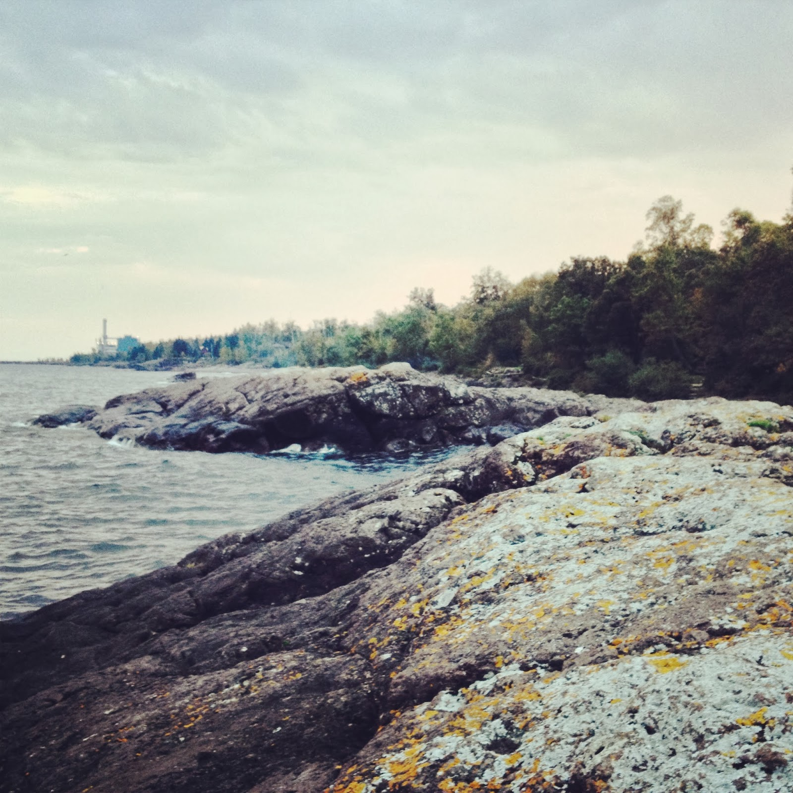 The lichen encrusted Lake Superior shore outside of Cascade State Park.