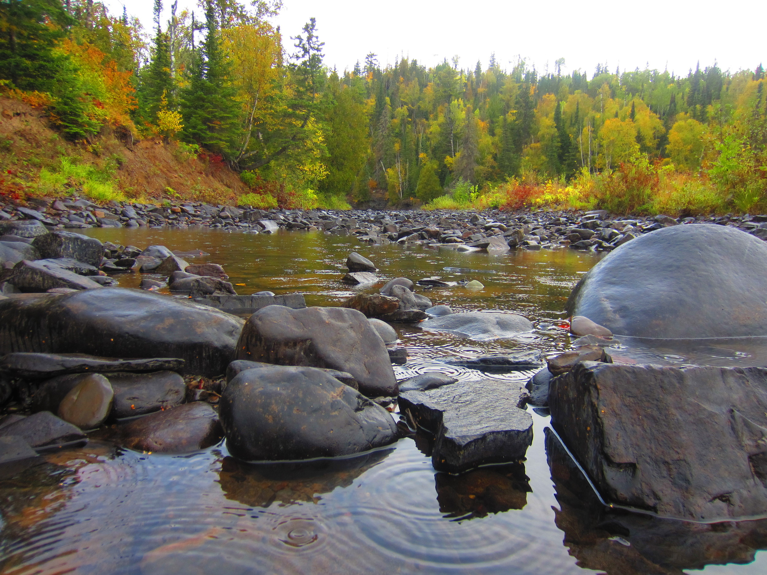 Fall Colors at Grand Portage State Park