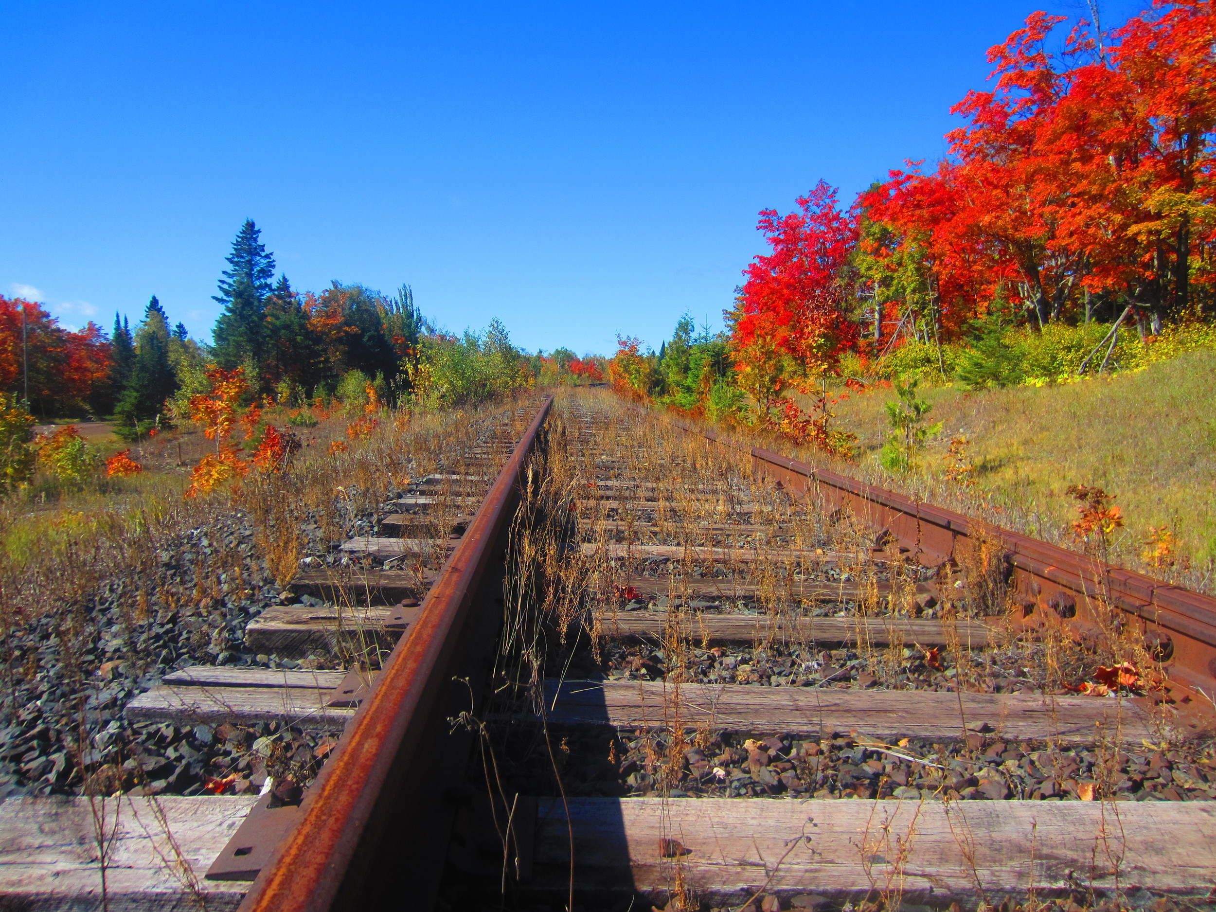 Railroad and Fall Colors in Superior National Forest