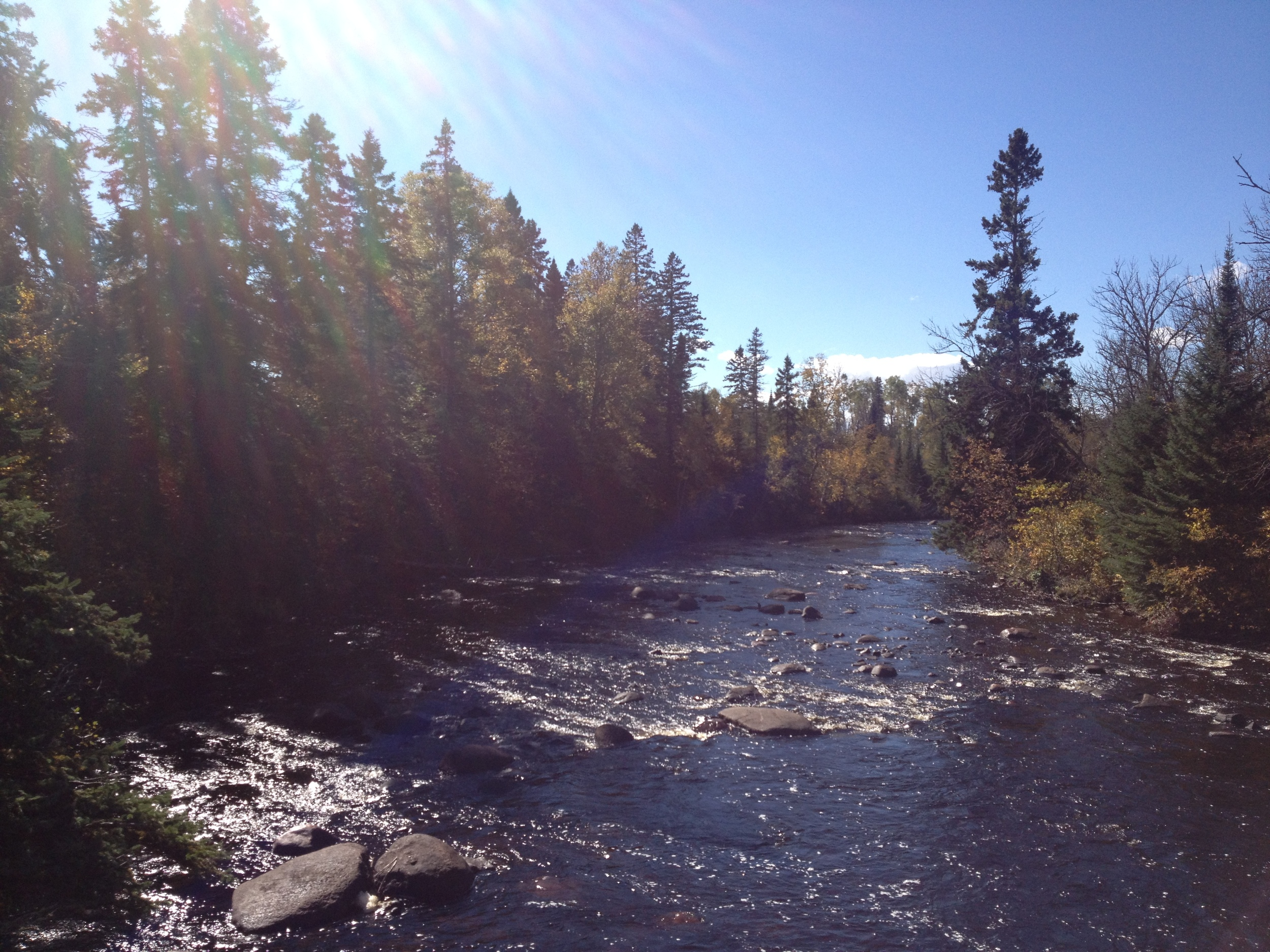 River in Superior National Forest