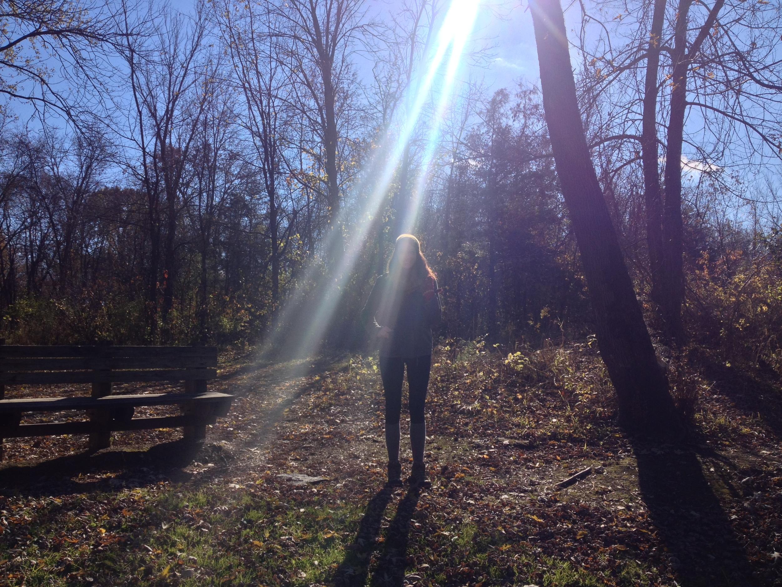 Sunlight on Ellie