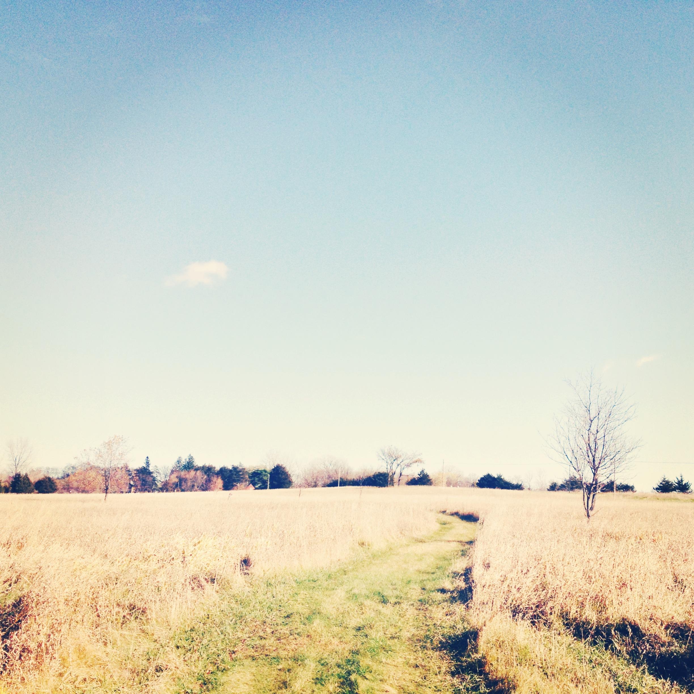 Even a prairie section.