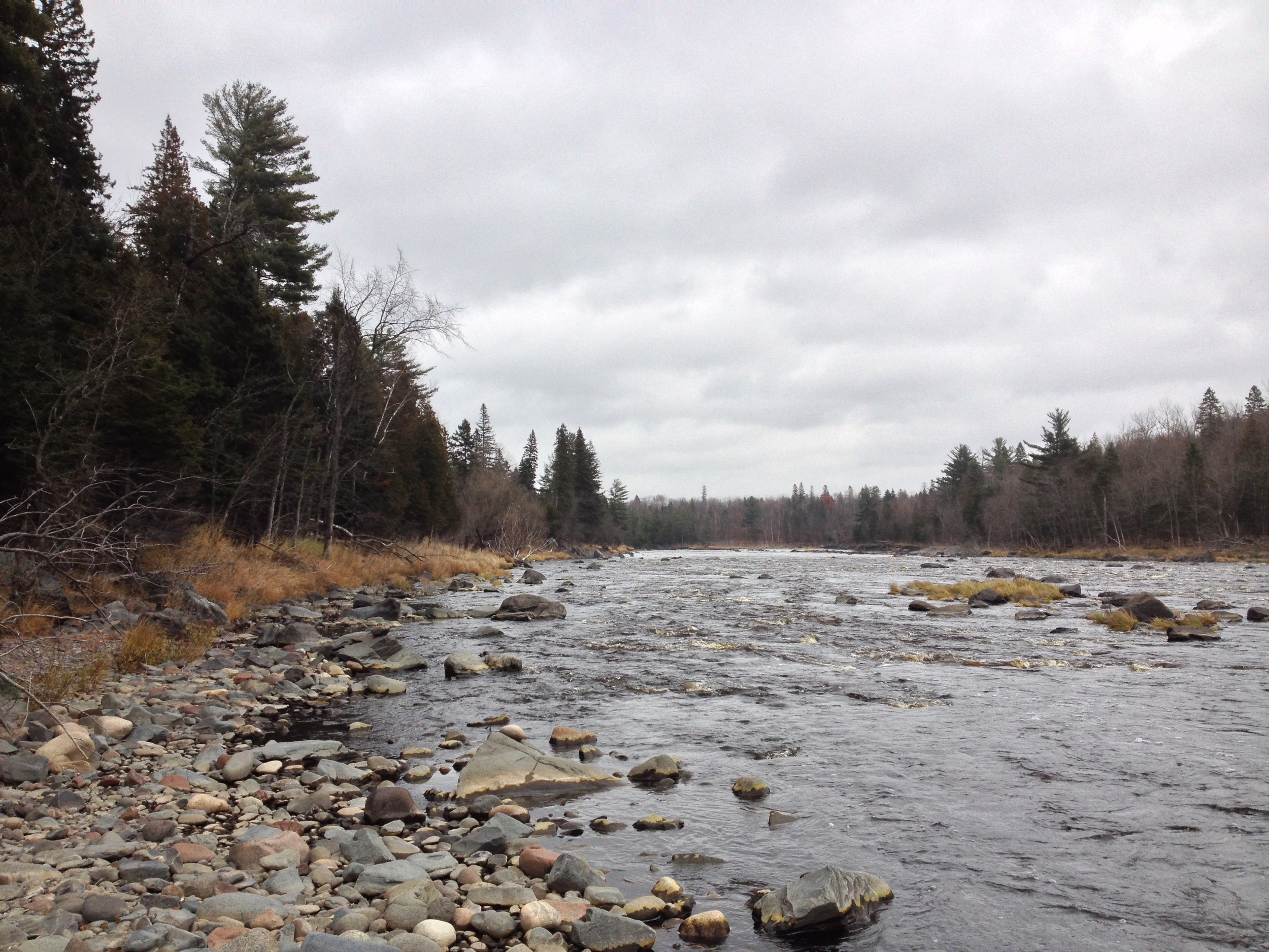 Minnesota Hiking Club Trail at Jay Cooke State Park