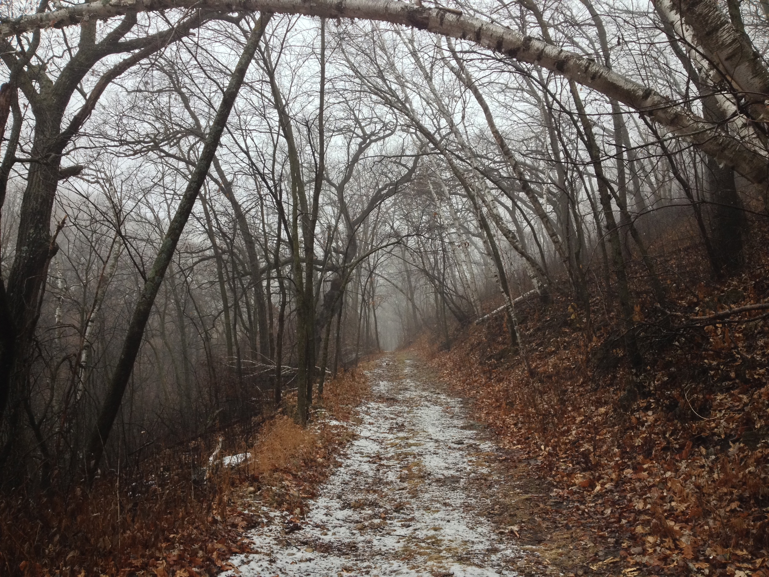 Minnesota Hiking Trail at Frontenac State Park