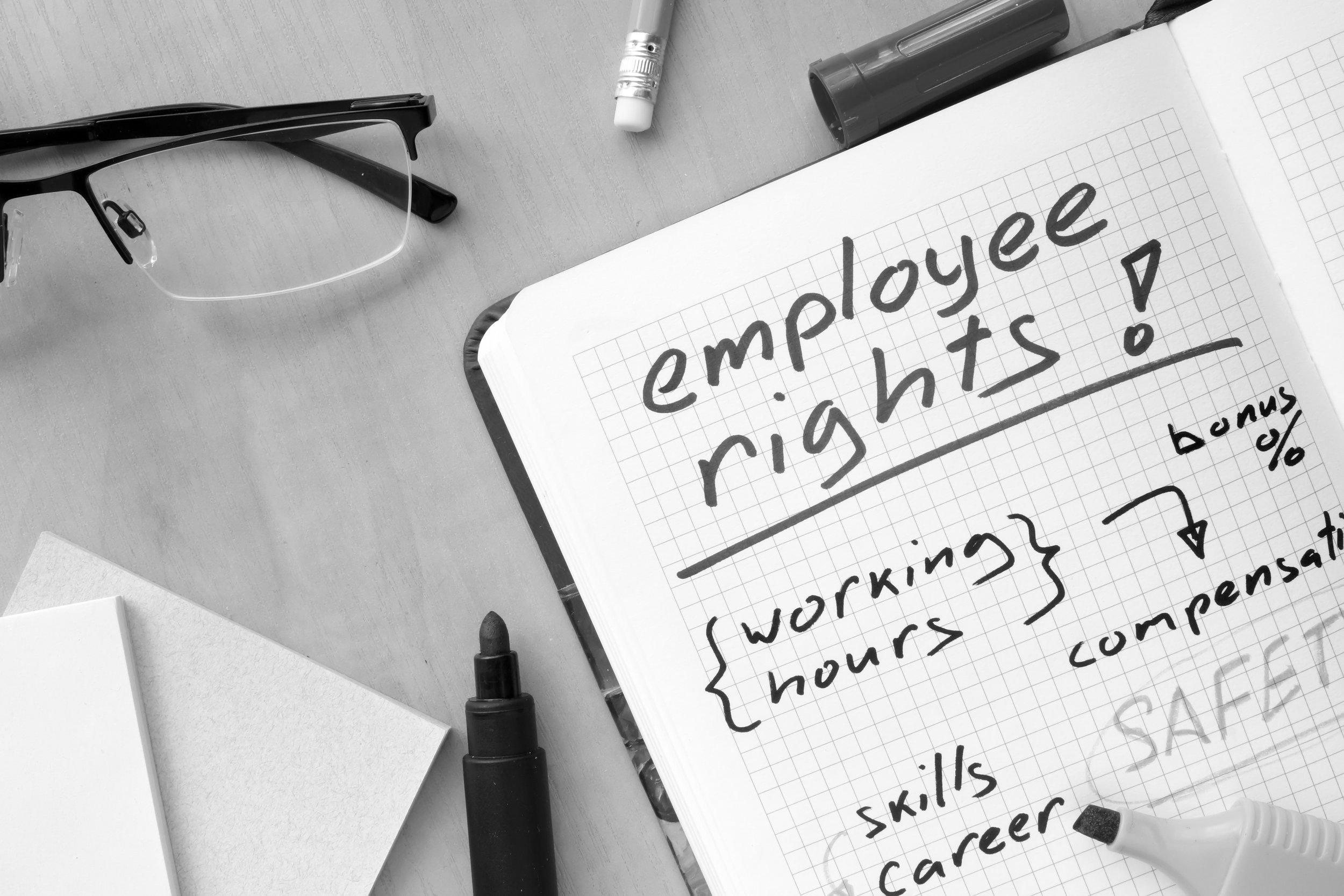 Employment Litigation -