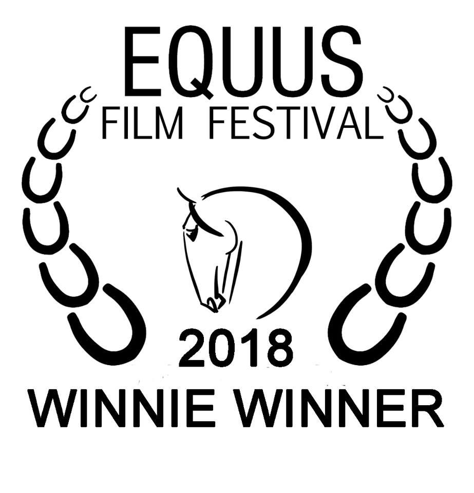 equus winner.jpg