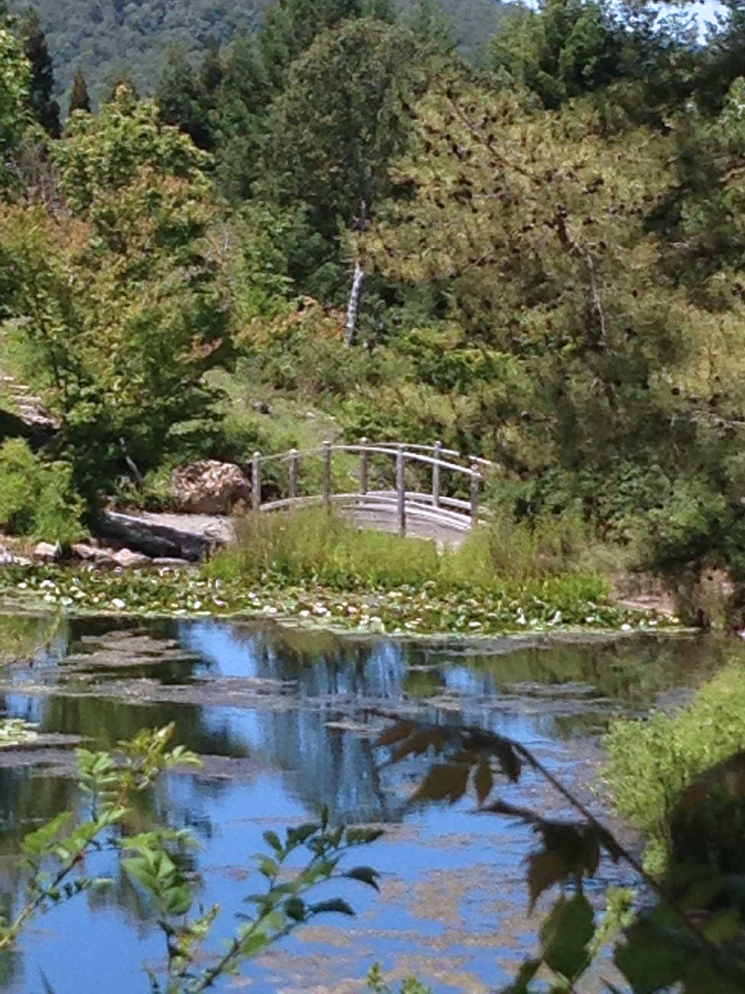 gardenbridge.jpg
