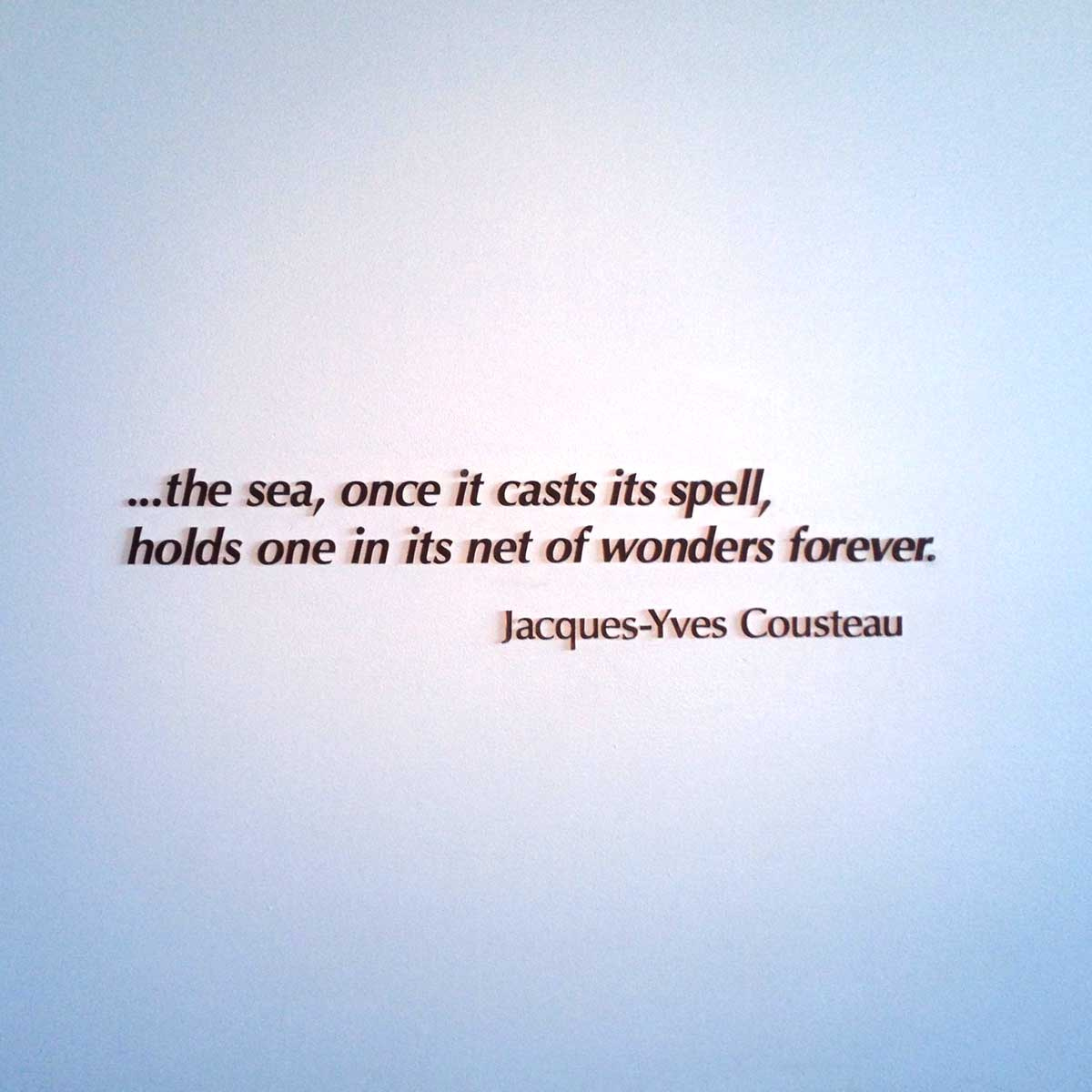 This is one of the beautiful quotes on the wall at the Monterey Bay Aquarium.
