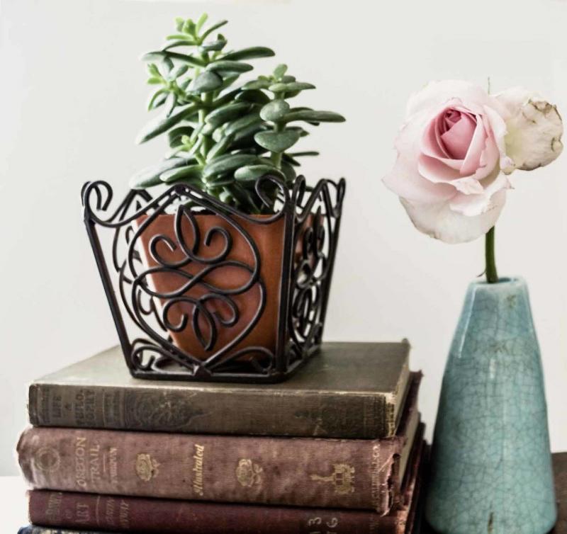 succulentbooks.jpg