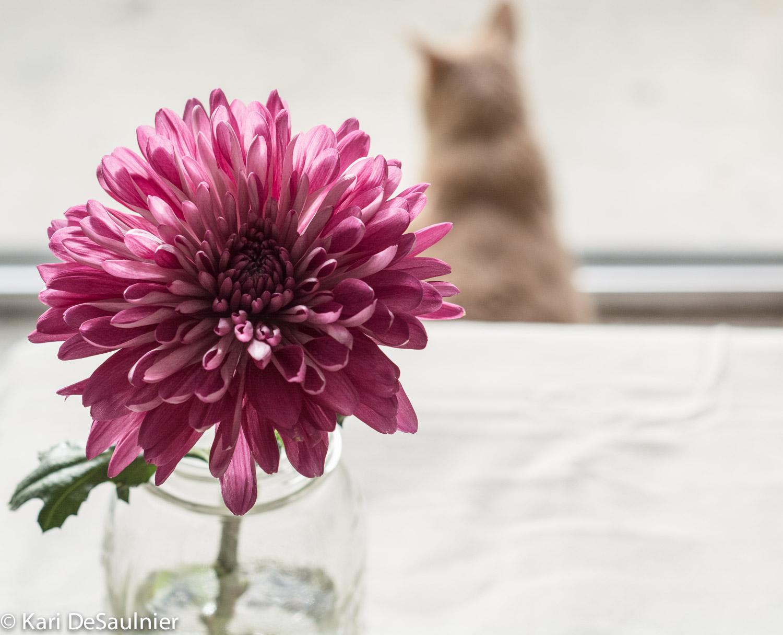 flowerhuey.jpg