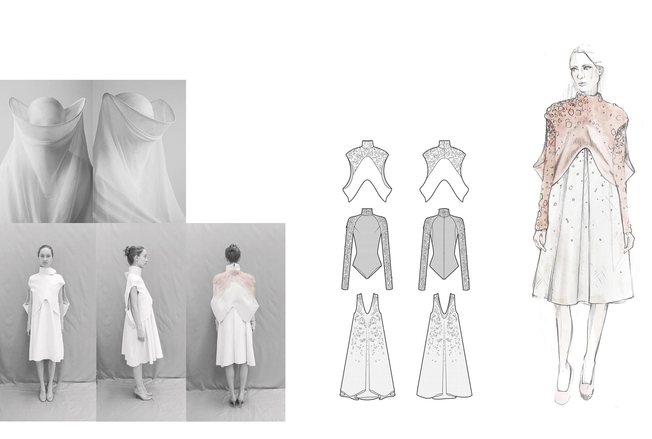 Rose Process 2.jpg