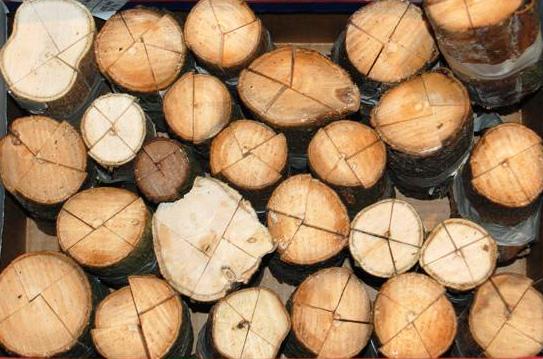 split_miami_6_wood_stock.jpg