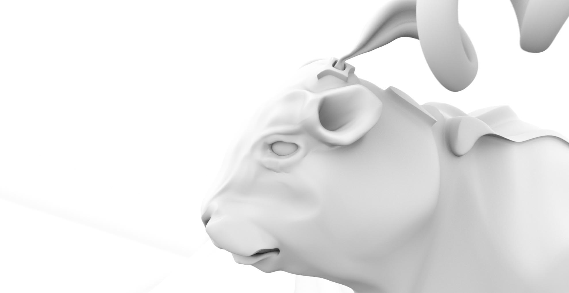 Cow_head_close_up_AO.jpg