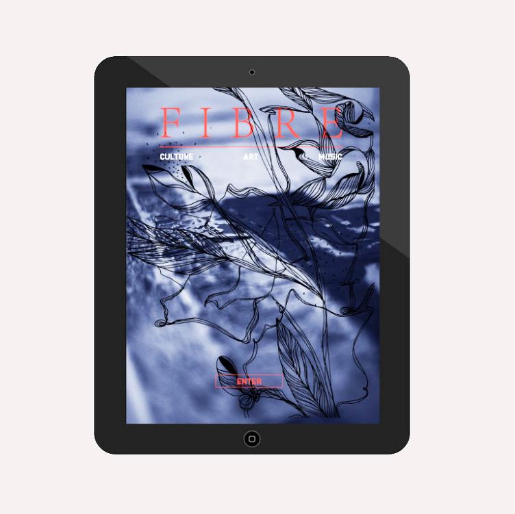 WEB DESIGN - Fibre Magazine
