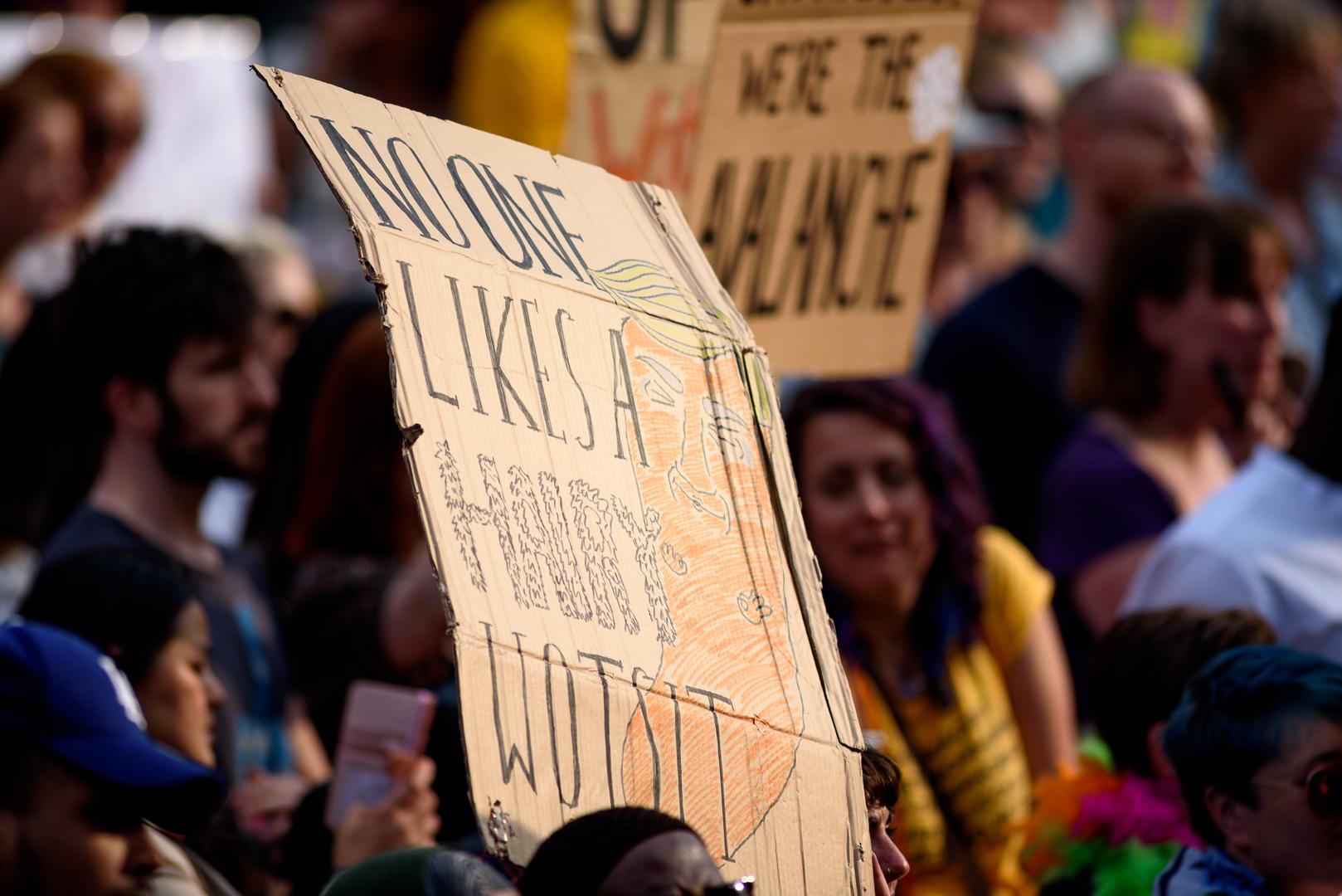 Sheffield Anti-Trump rally July 2018 Blog19.jpg