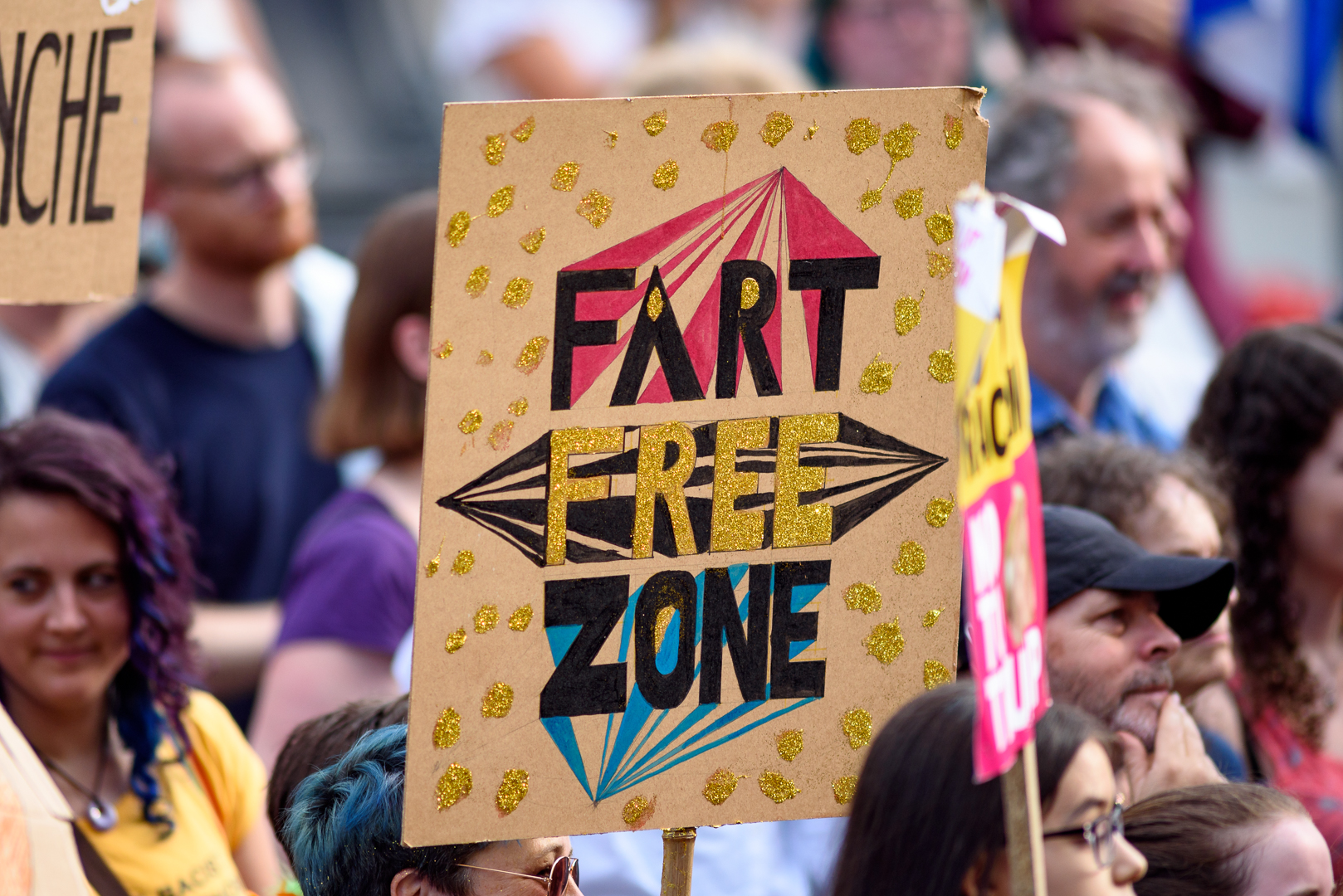 Sheffield Anti-Trump rally July 2018 Blog21.jpg