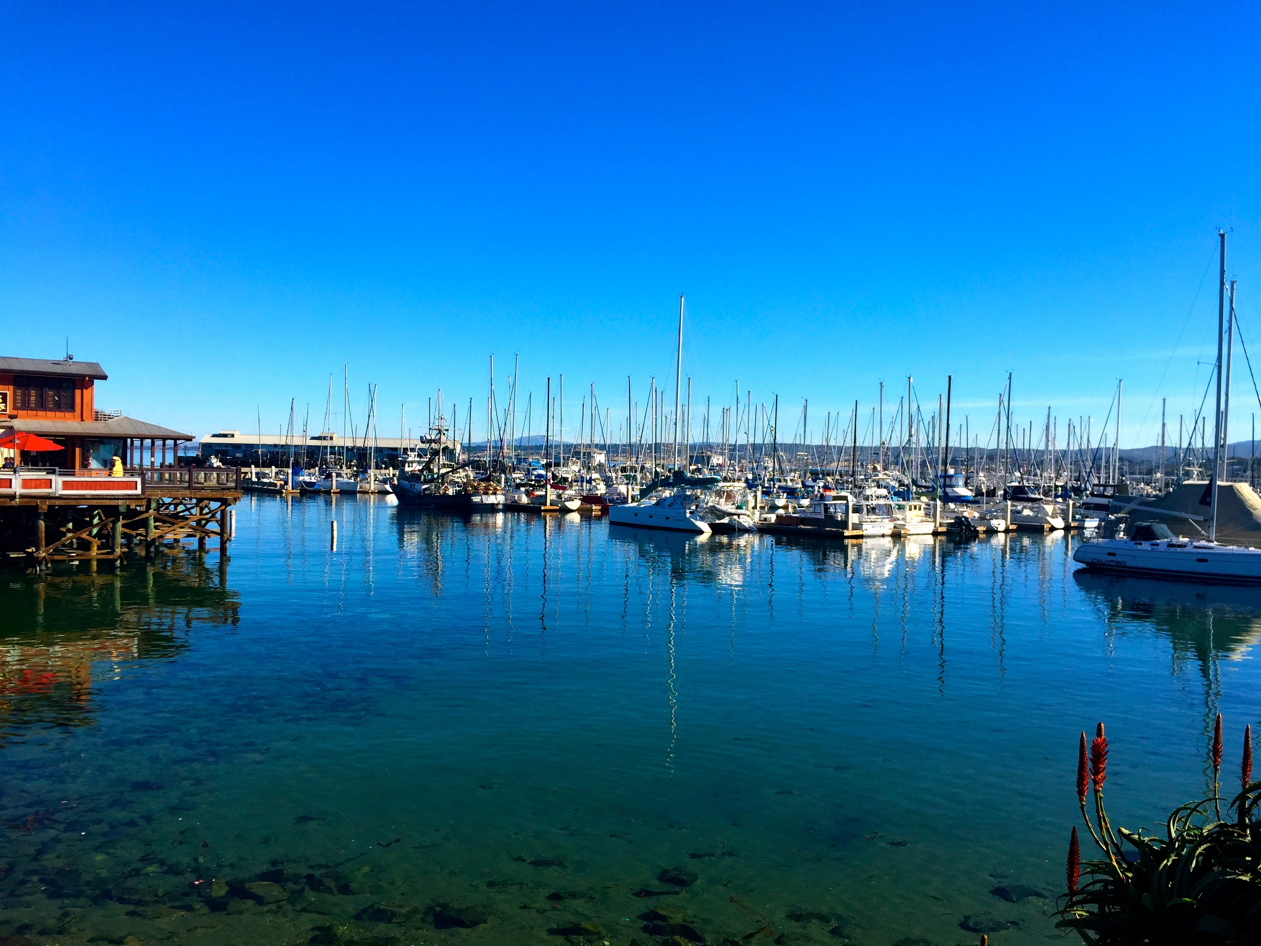 The view from Fisherman's Wharf, Monterey