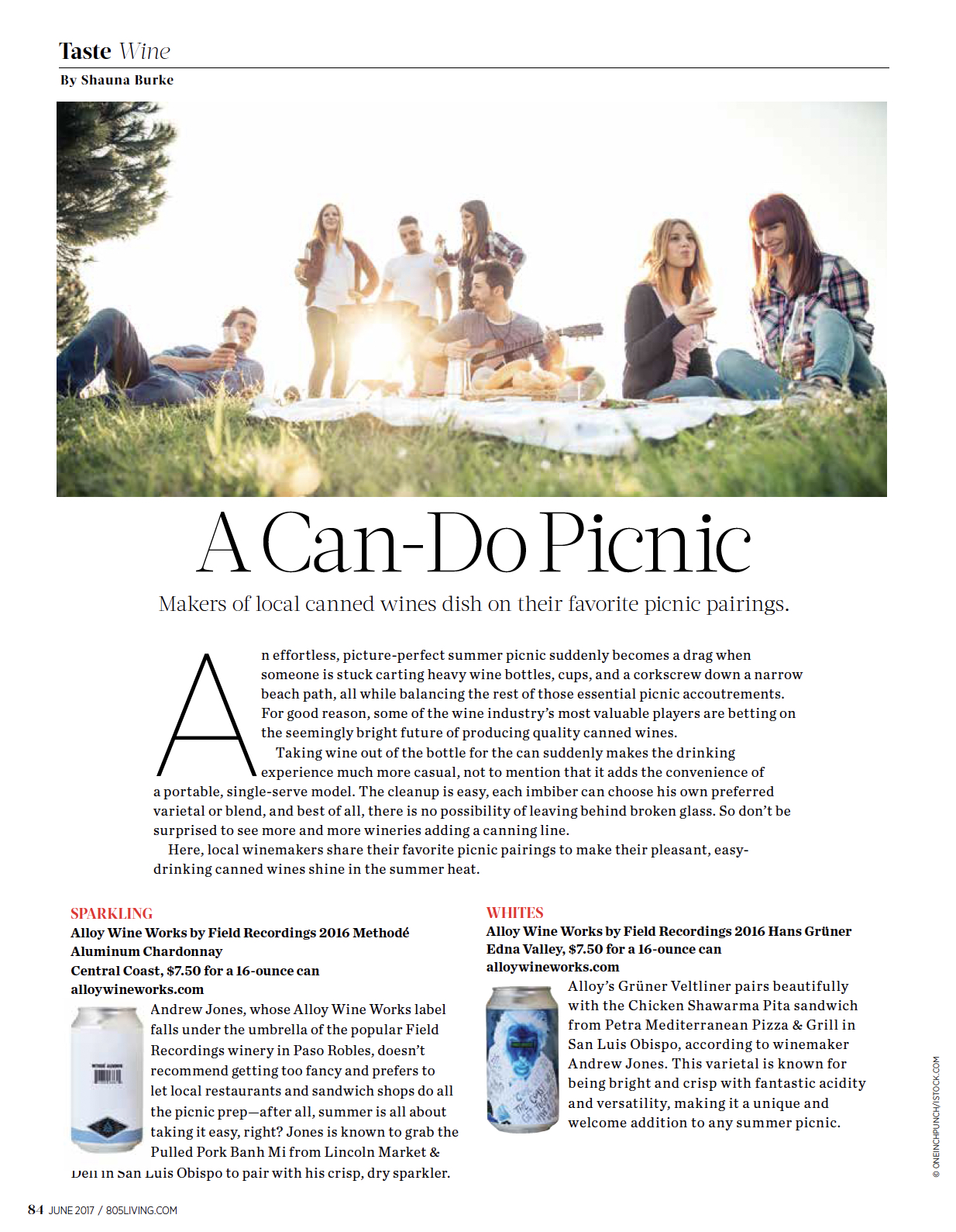A Can-Do Picnic / 805 Living