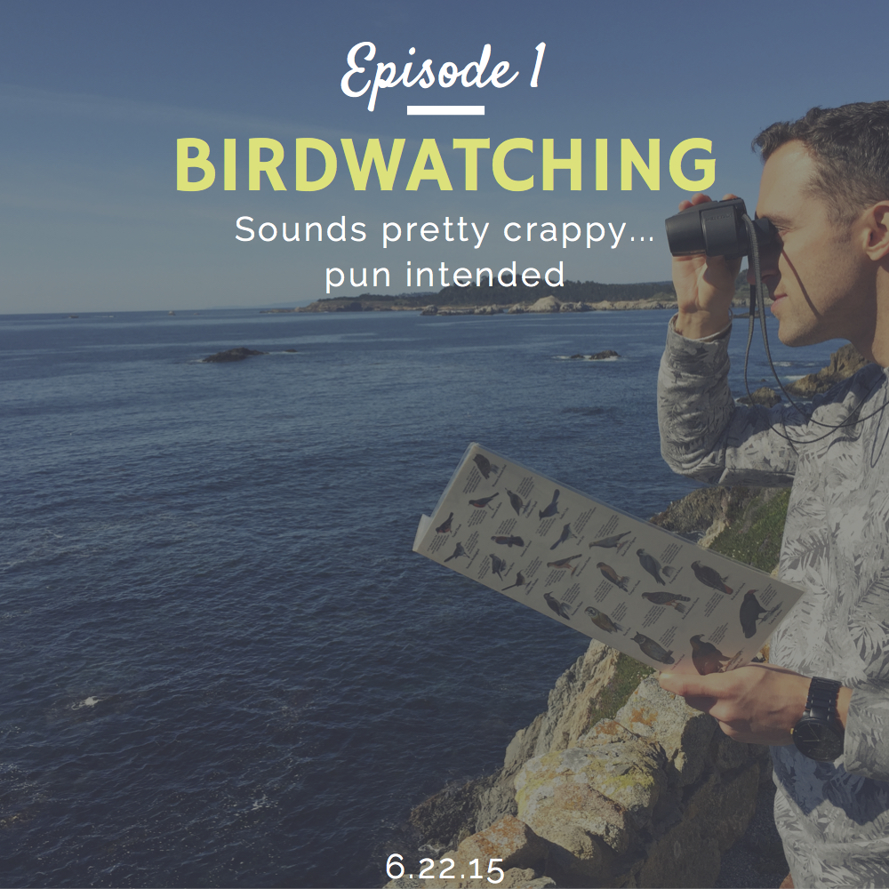 How to do birdwatching interview with Lisa Myers