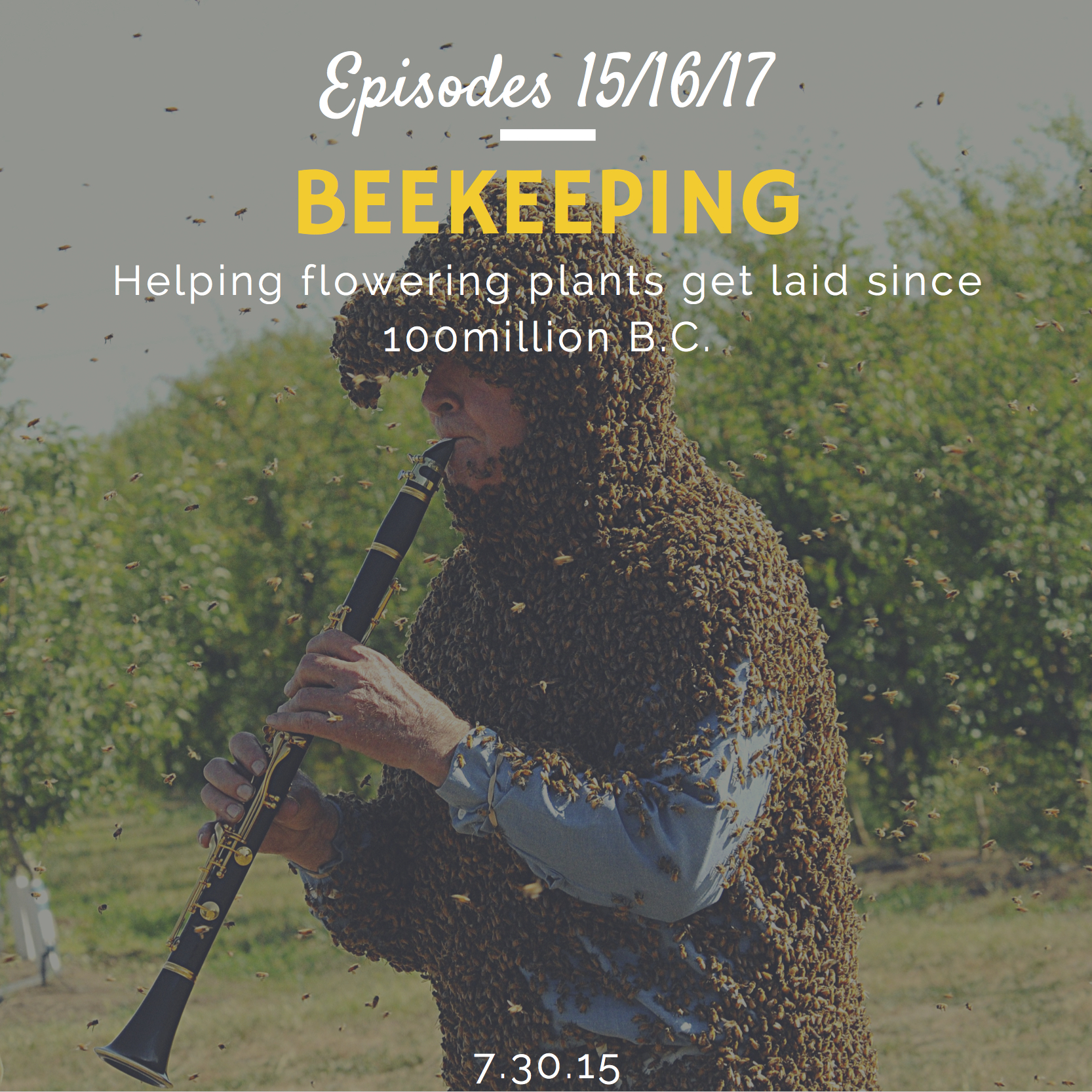 How to start beekeeping and urban beekeeping interview