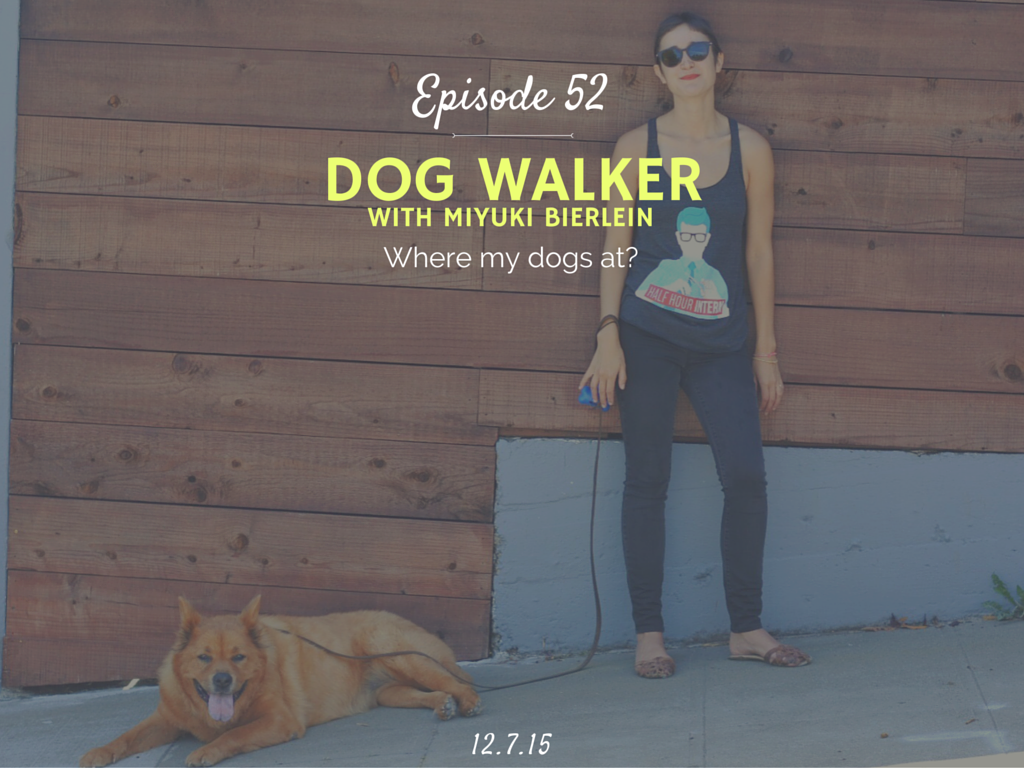 What is it like to be a professional dog walker interview with Floppy Ears Pet Care Owner Miyuki Bierlein