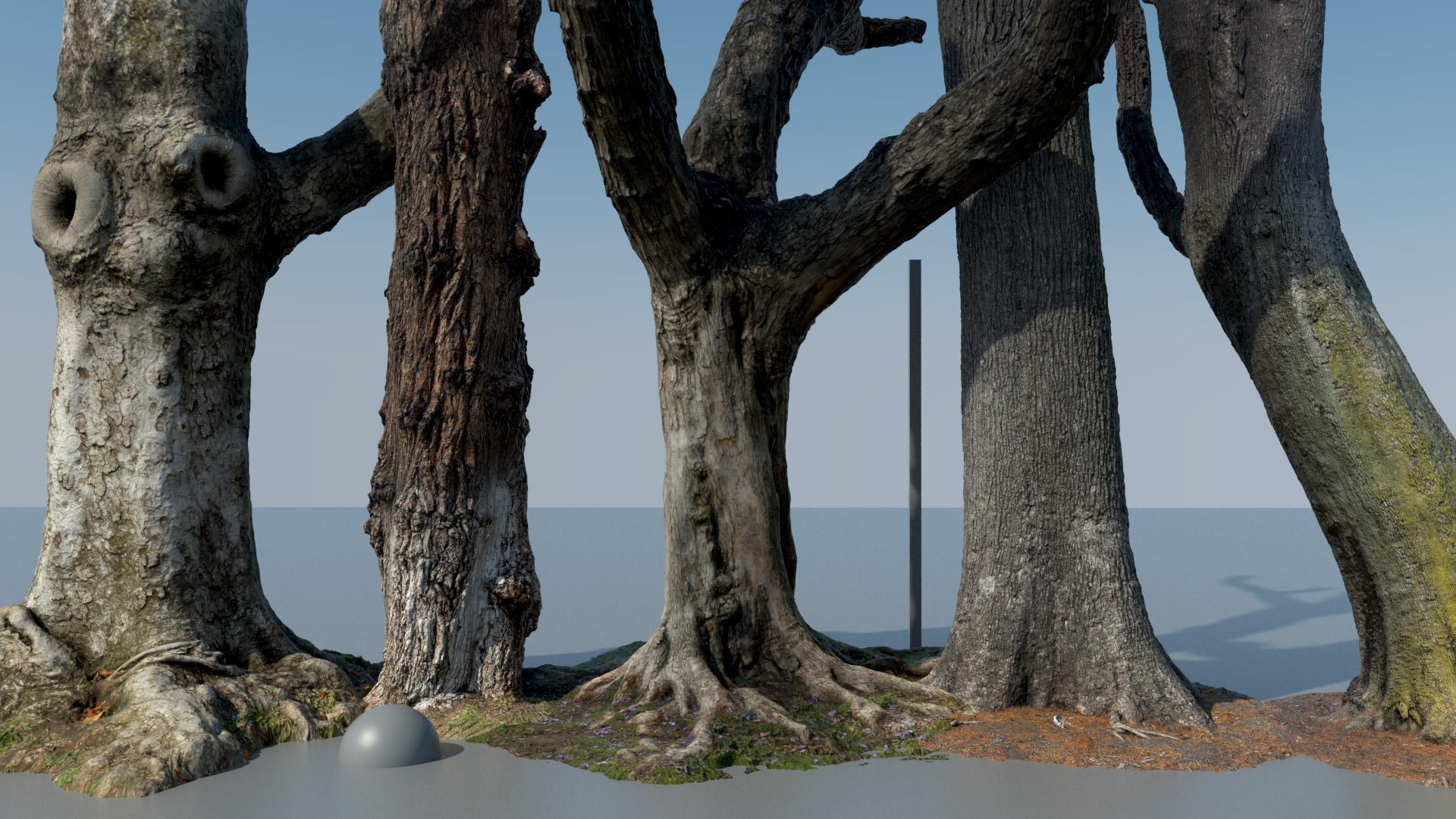 Trees_A.jpg