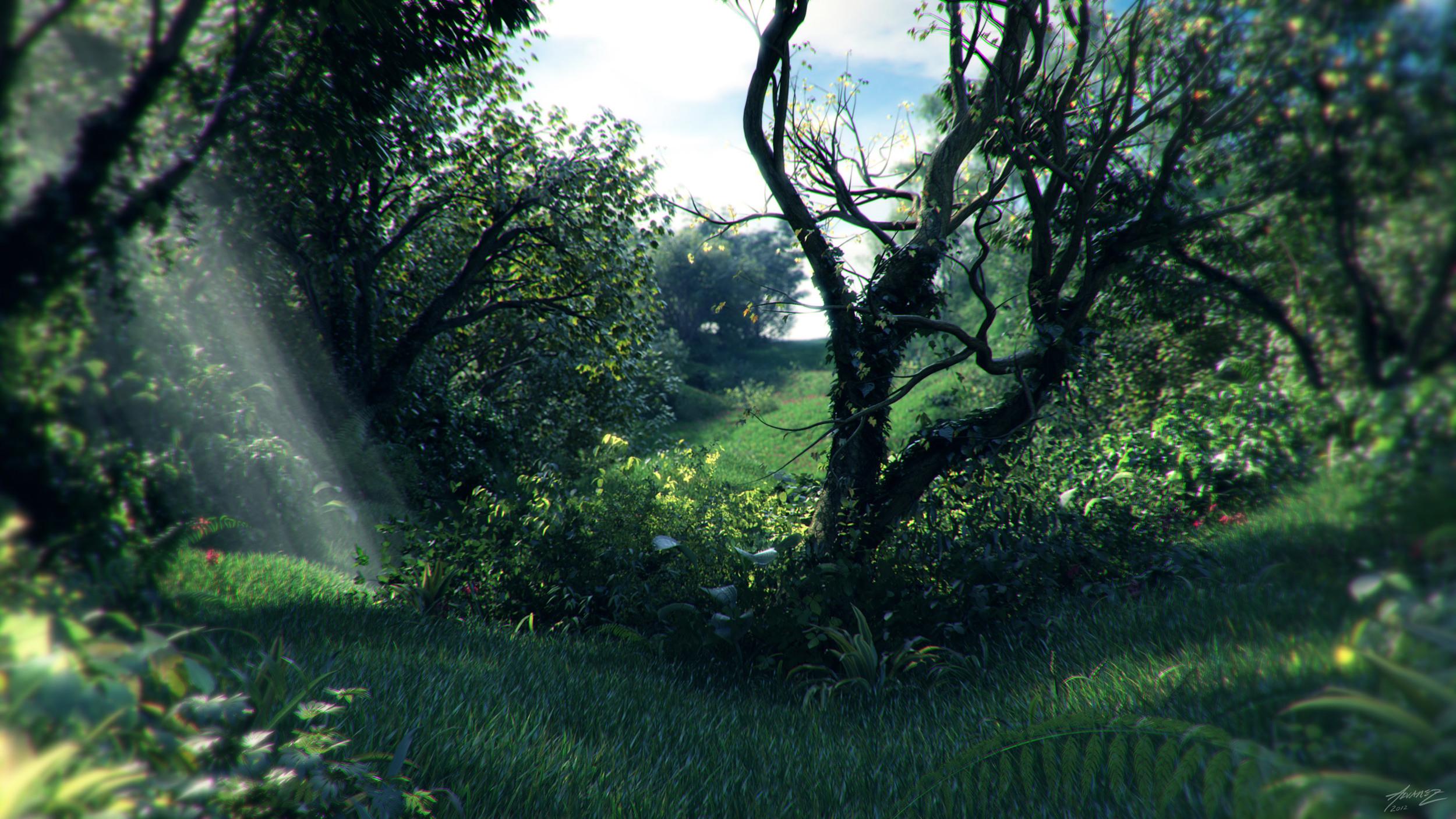 meadow_3k.jpg