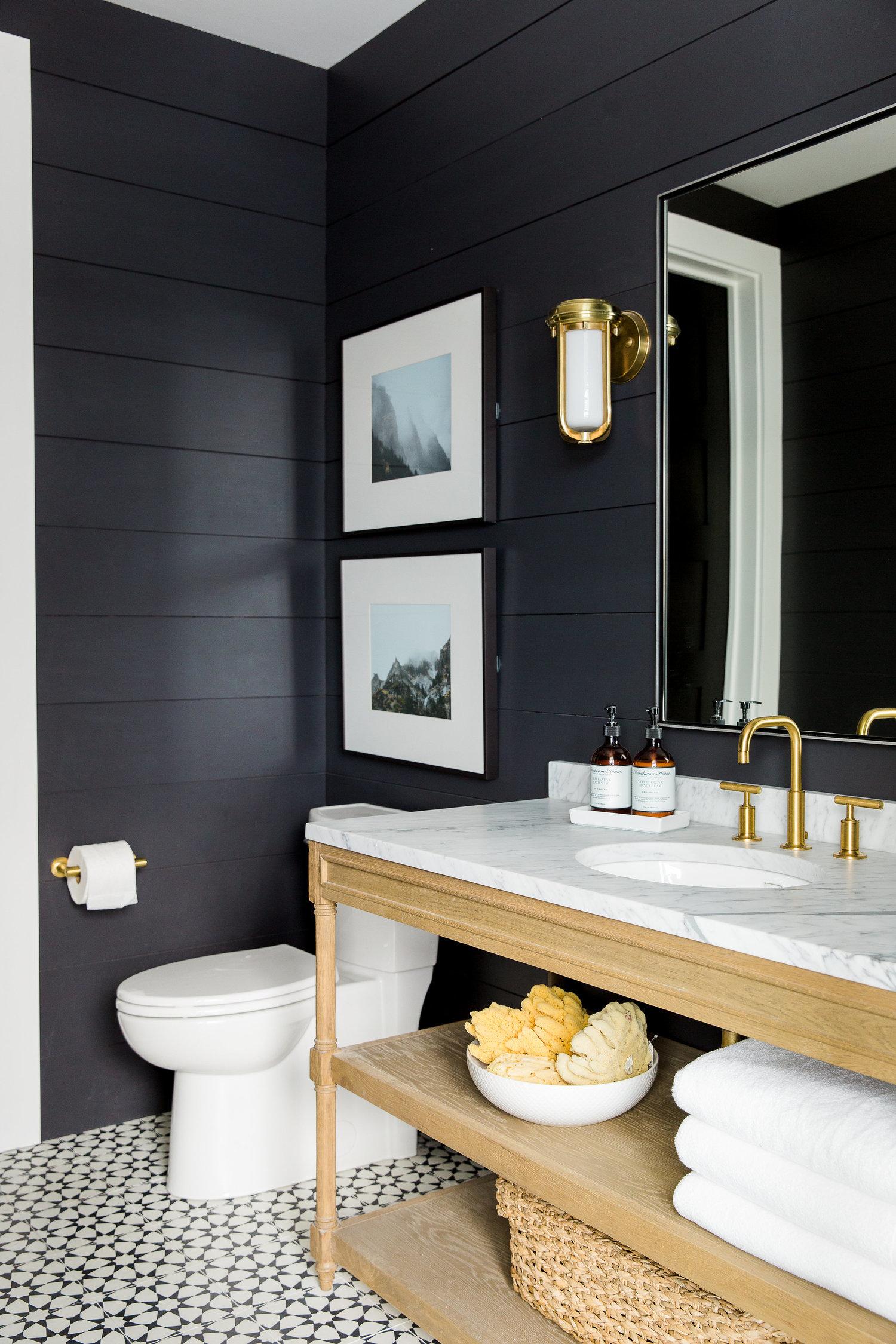 Toilet and vanity in dark shiplap bathroom