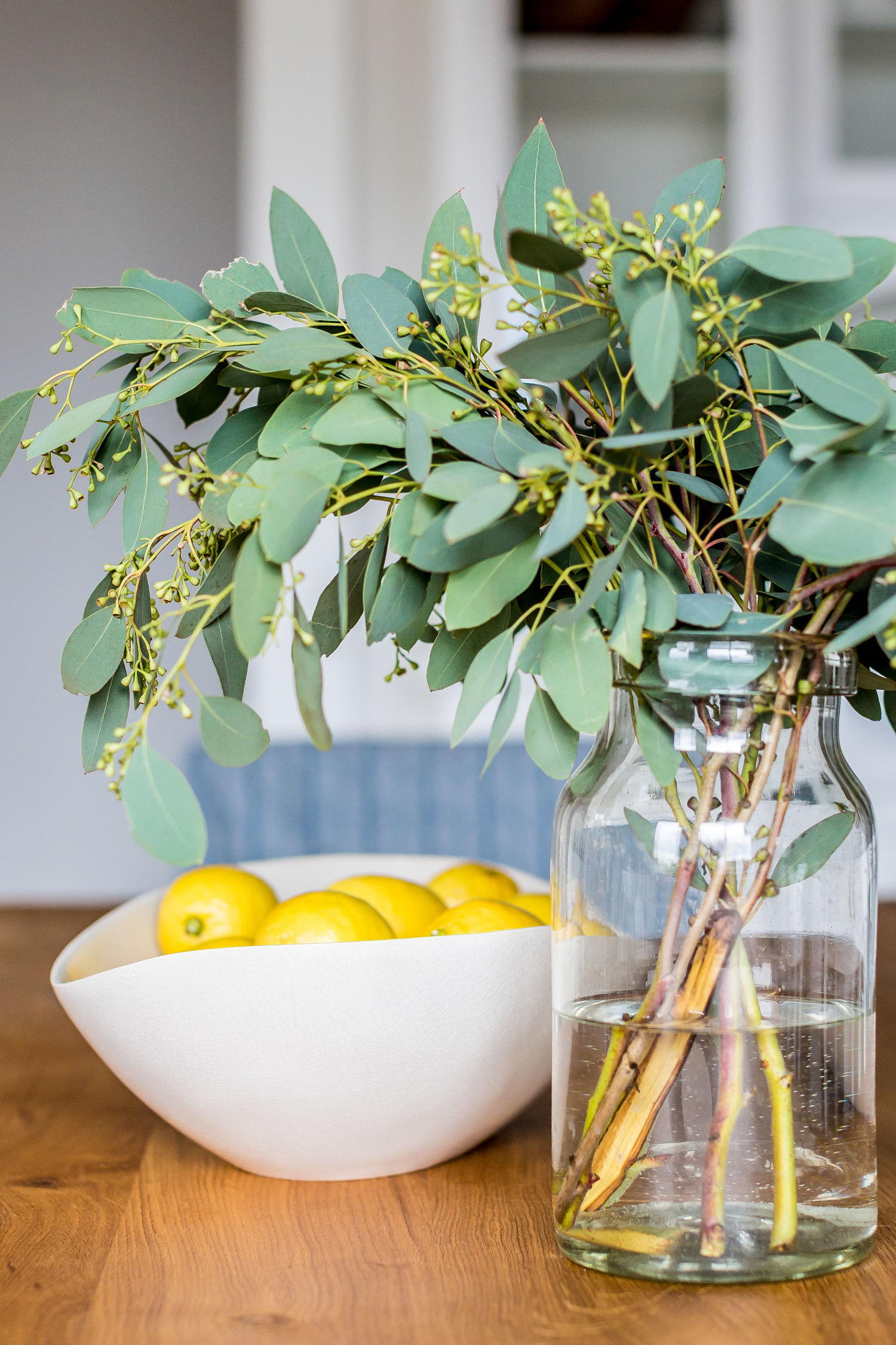 bowl of lemons and plant on kitchen table