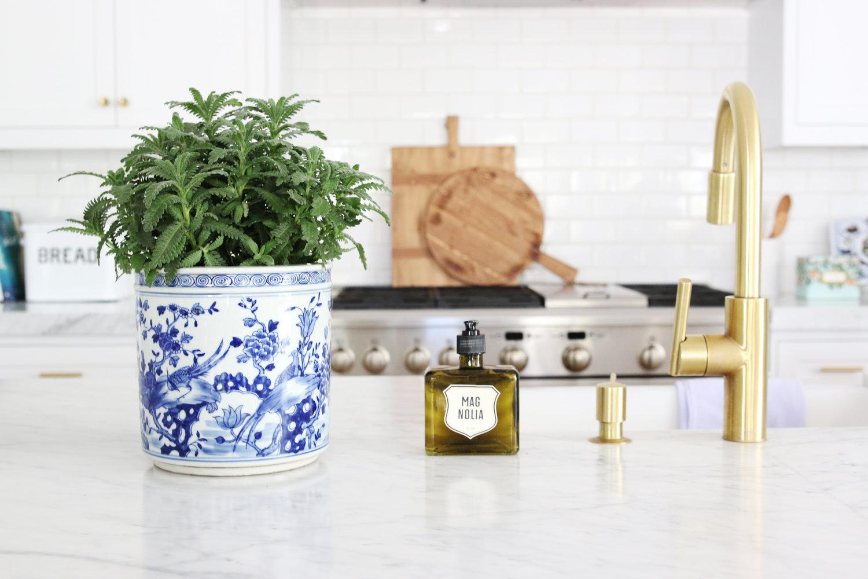 Kitchen plant on marble island