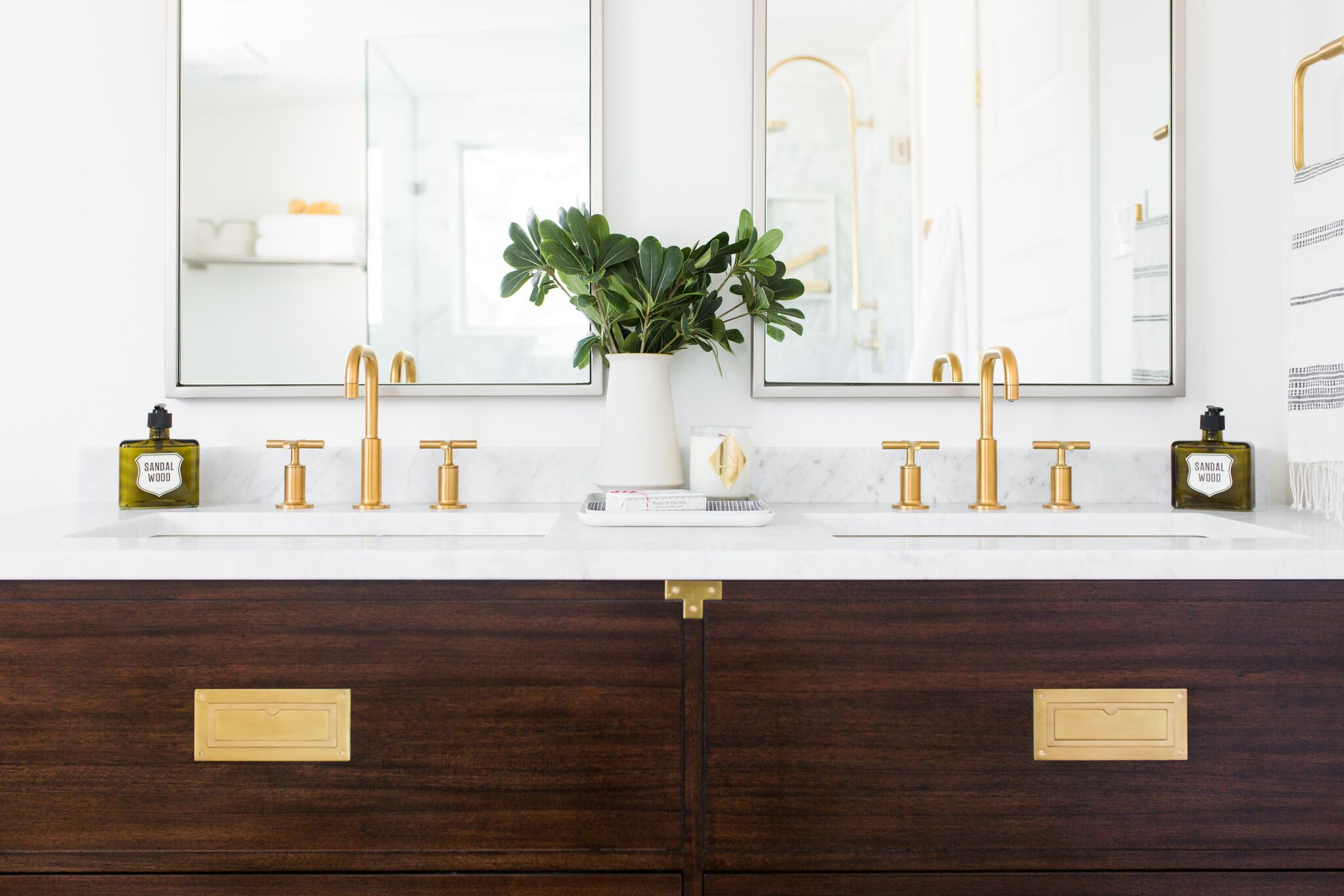 Small green plant between double sink vanity