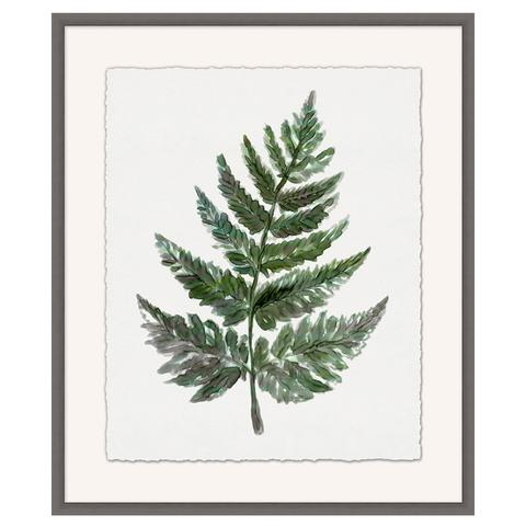 Detailed_Foliage_1_large.jpg