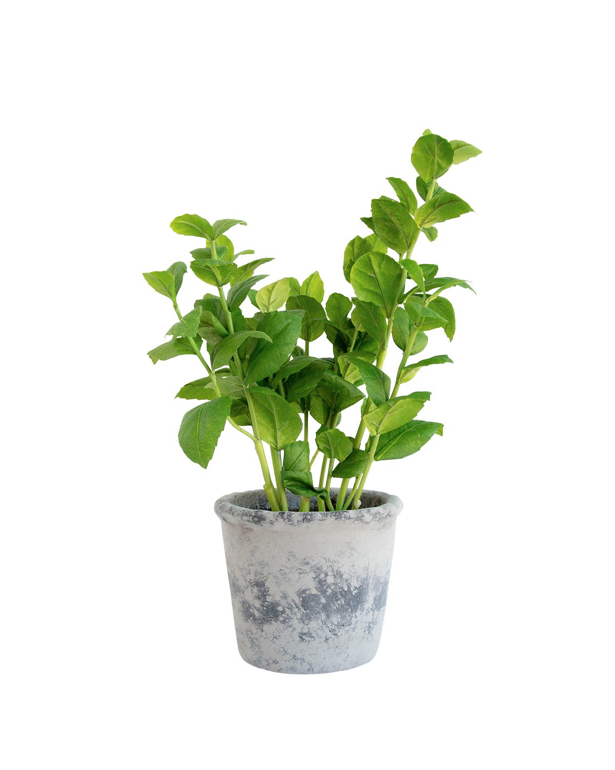 Faux_Basil_Potted_Herb_1.jpg