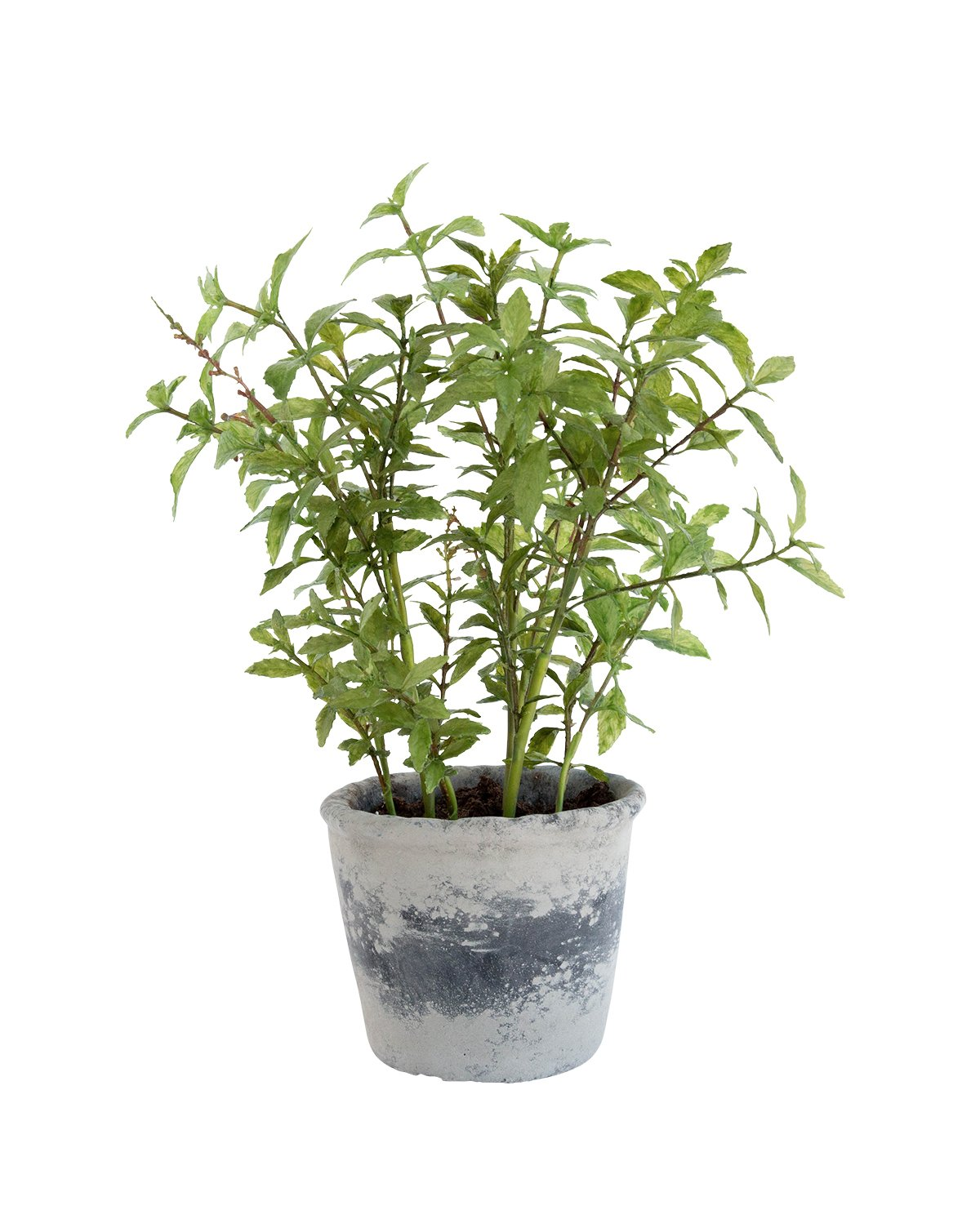 Faux_Mint_Potted_Herb_1.jpg