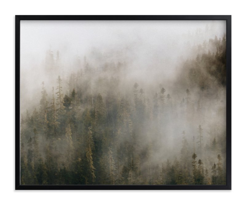 pacific-north-fog.jpg