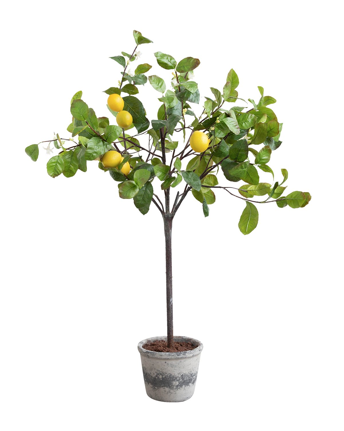 Faux_Potted_Lemon_Tree_1.jpg