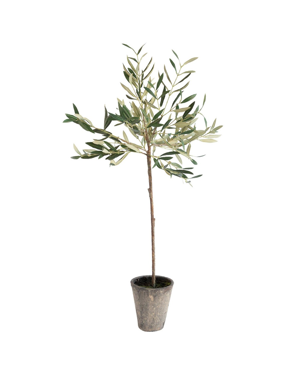 Faux_Potted_Olive_Tree_1.jpg