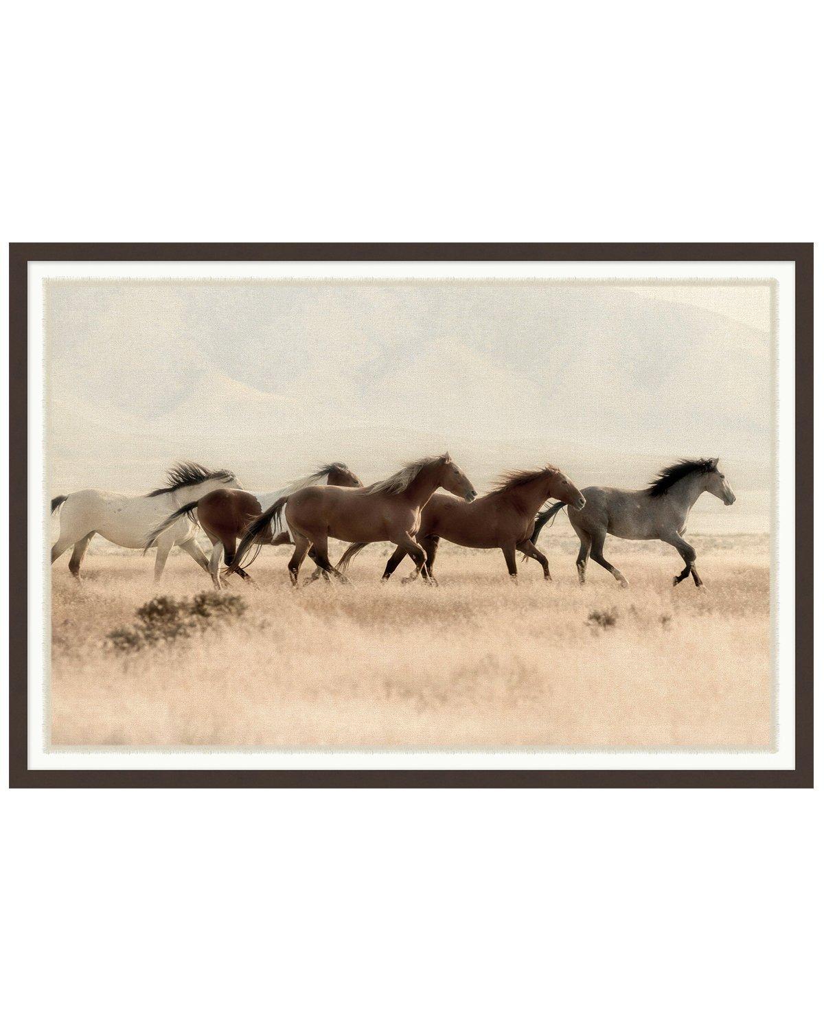 Wild_Horses_1.jpg