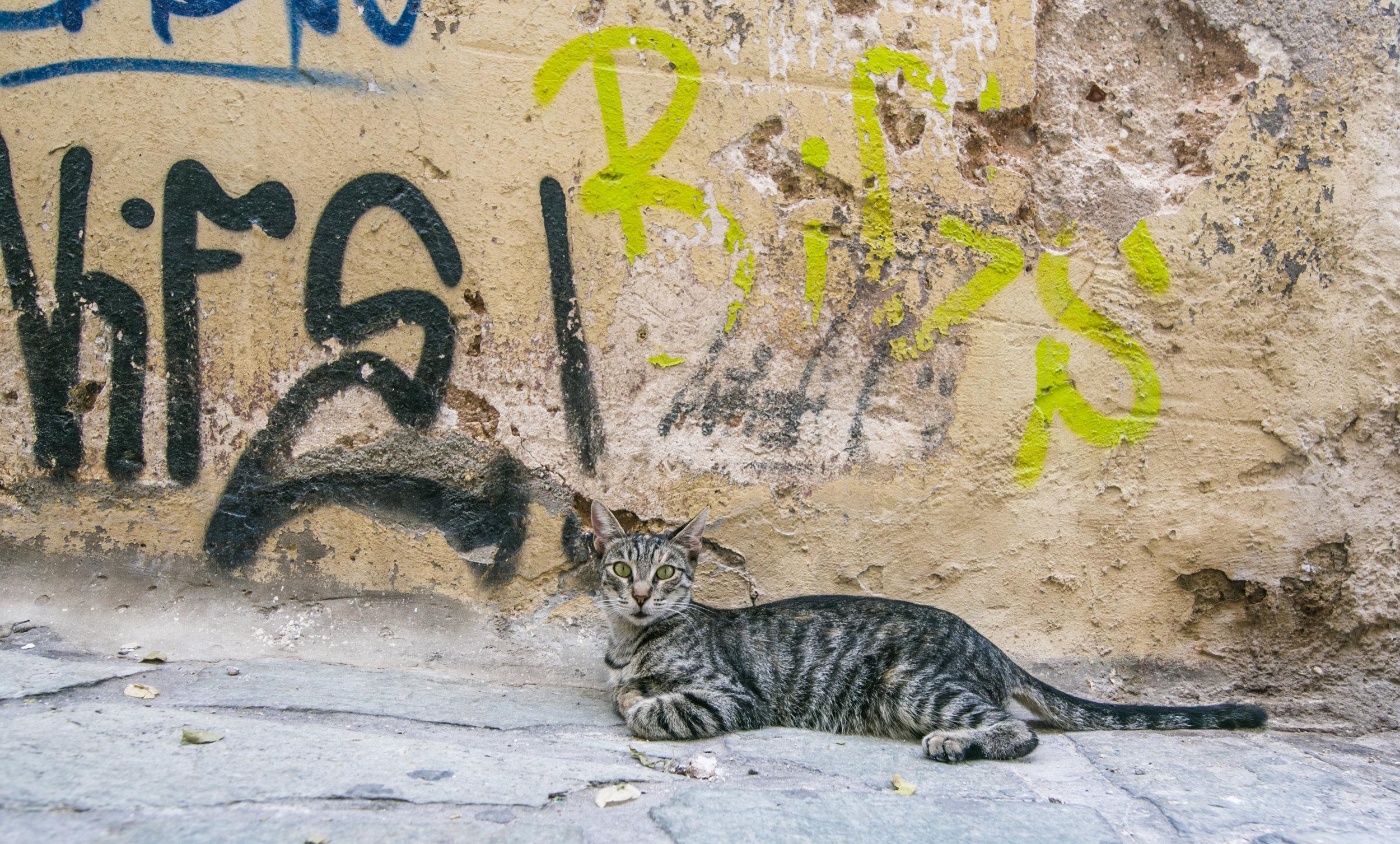 Athens Day 2 - Mike Schwarz_-6.jpg