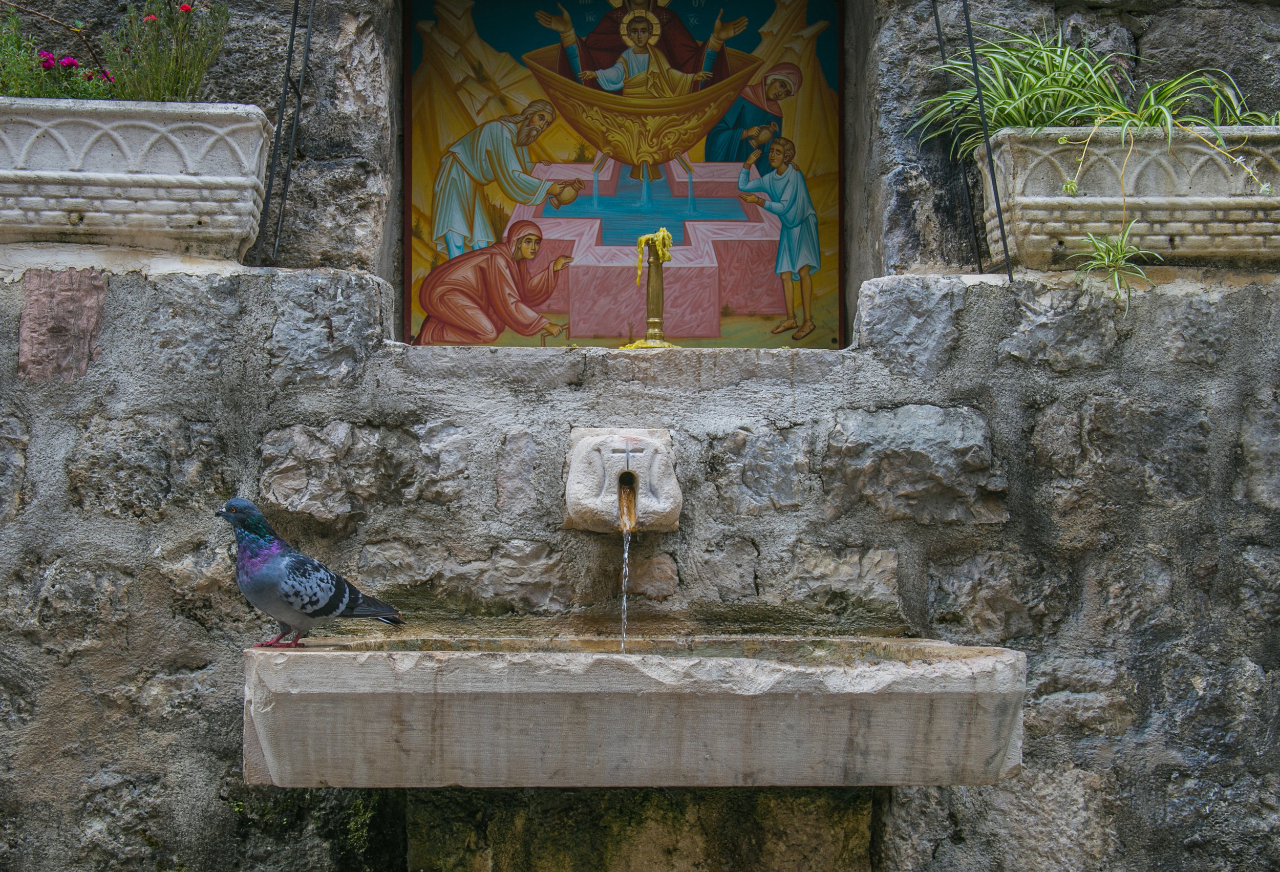 A spring containing holy water behind a church in the Old City of Kotor, Montenegro.