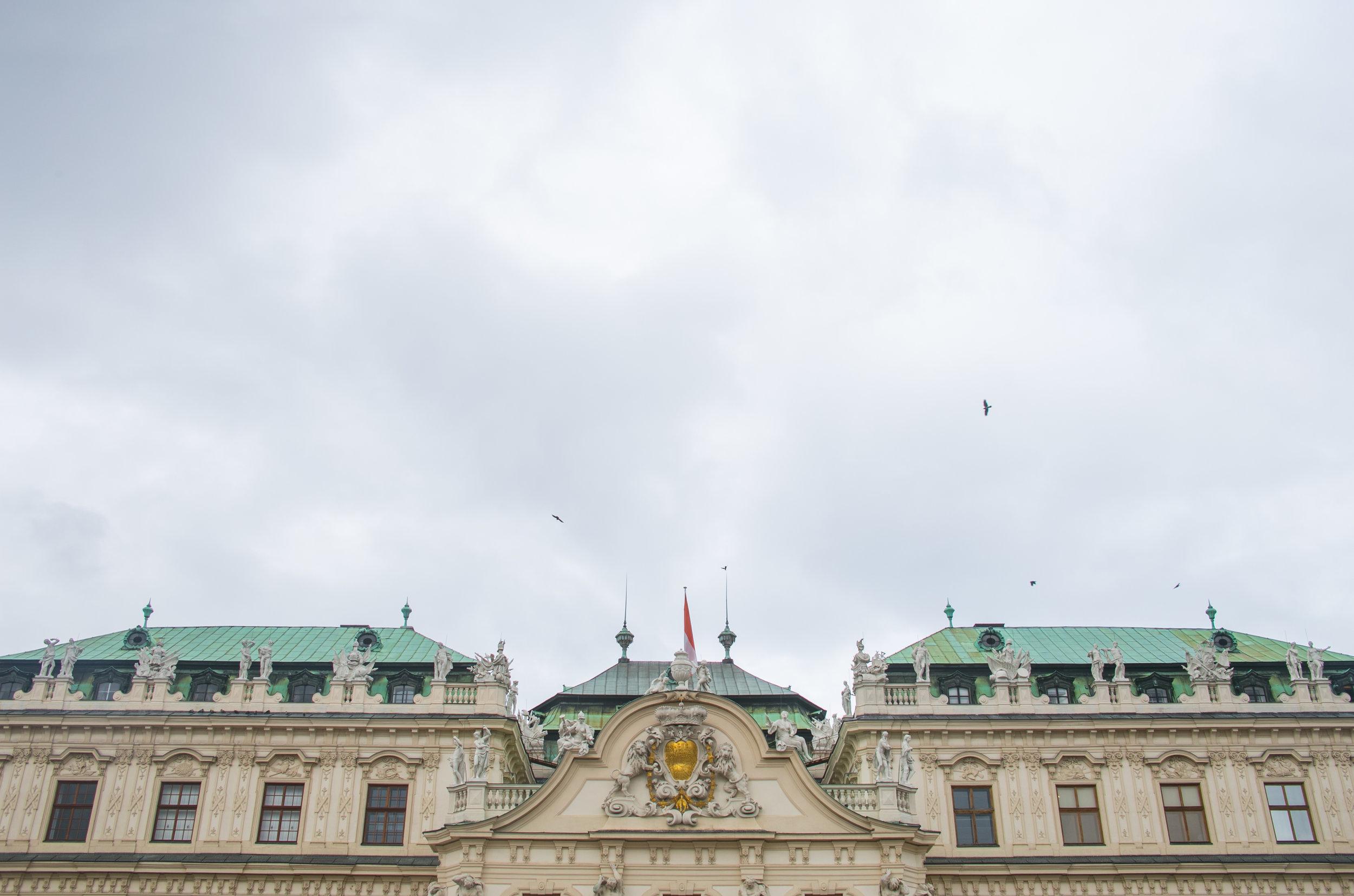 Vienna Finals - Mike Schwarz_.jpg