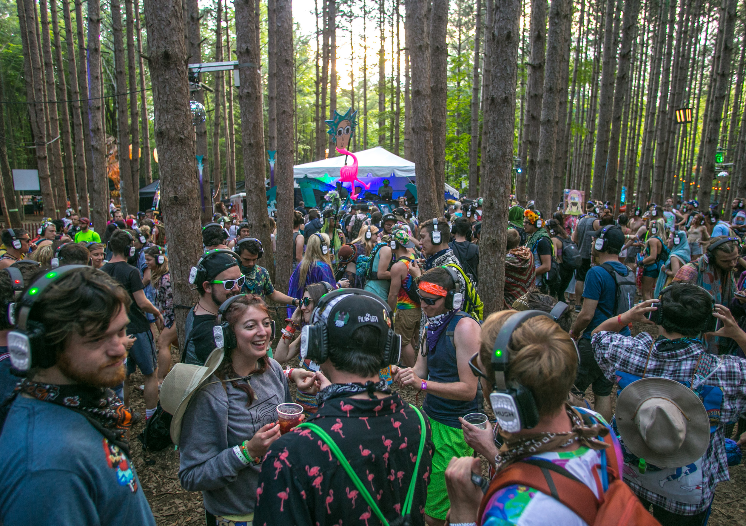 Electric Forest 2017 - Mike Schwarz_-10.jpg