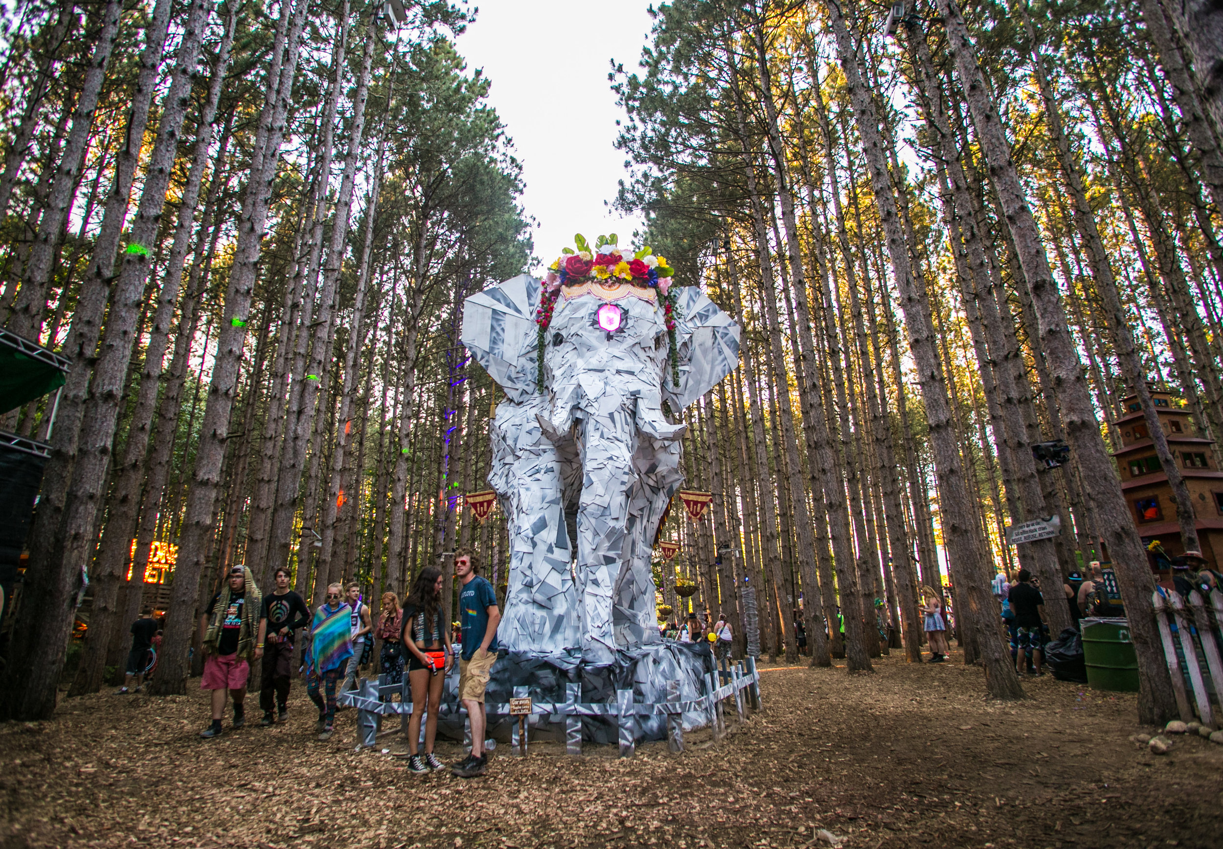 Electric Forest 2017 - Mike Schwarz_-12.jpg