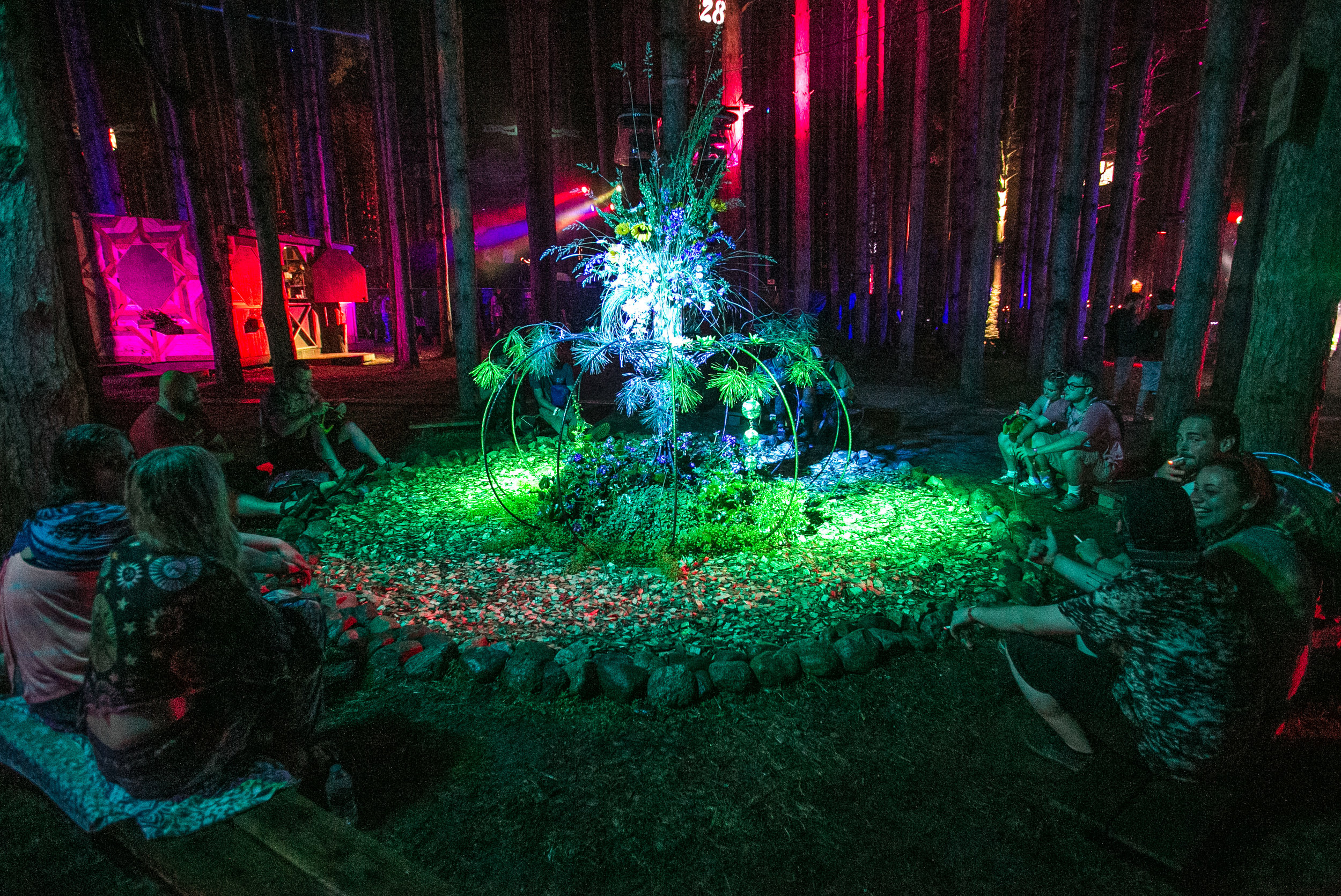 Electric Forest 2017 - Mike Schwarz_.jpg