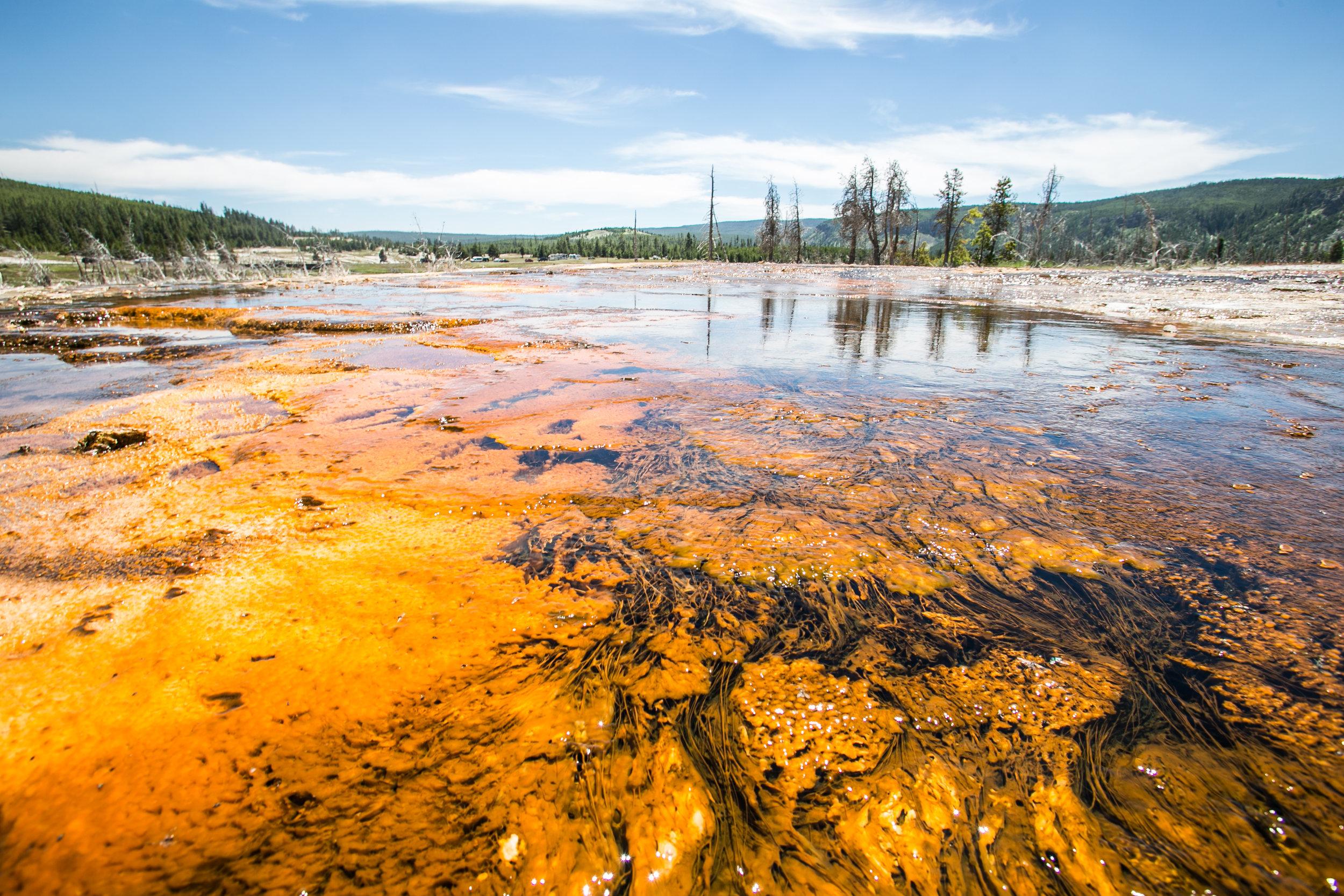 Yellowstone - Mike Schwarz_-4.jpg