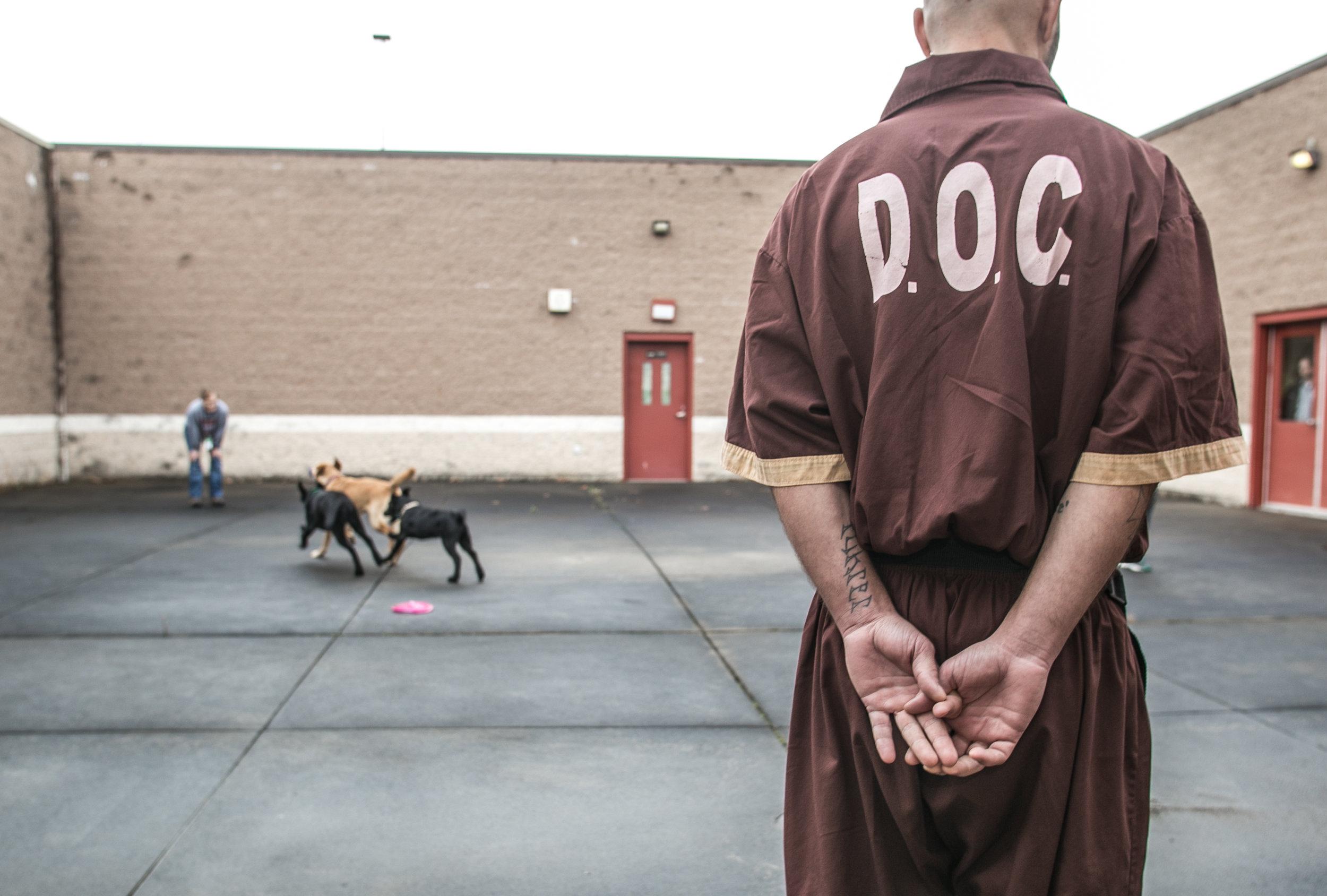 """""""Training Day"""" - SCI Greene Maximum Security Prison"""