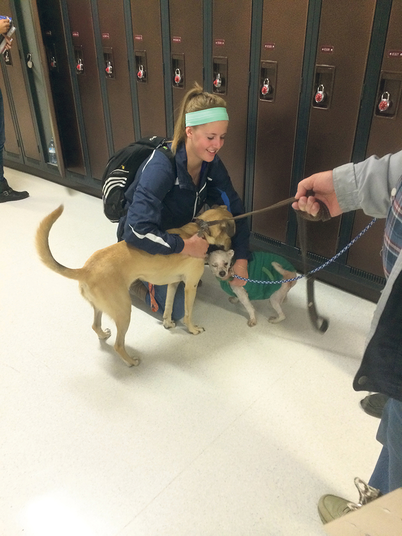 Puppy Days at Grand Prairie Regional College are very popular. They are an example of the many initiatives of student support. supplied