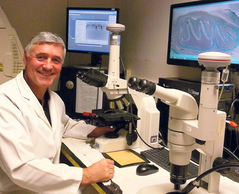 Dr. Bernhard Ganss of the University of Toronto's Faculty of Dentistry is an expert in enamel research. supplied